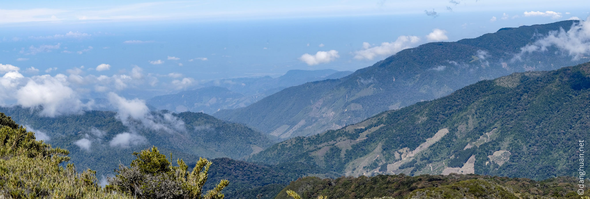 Au-dessus de la canopée, au sommet de la vallée (3450m) le Cerro de la Muerte...