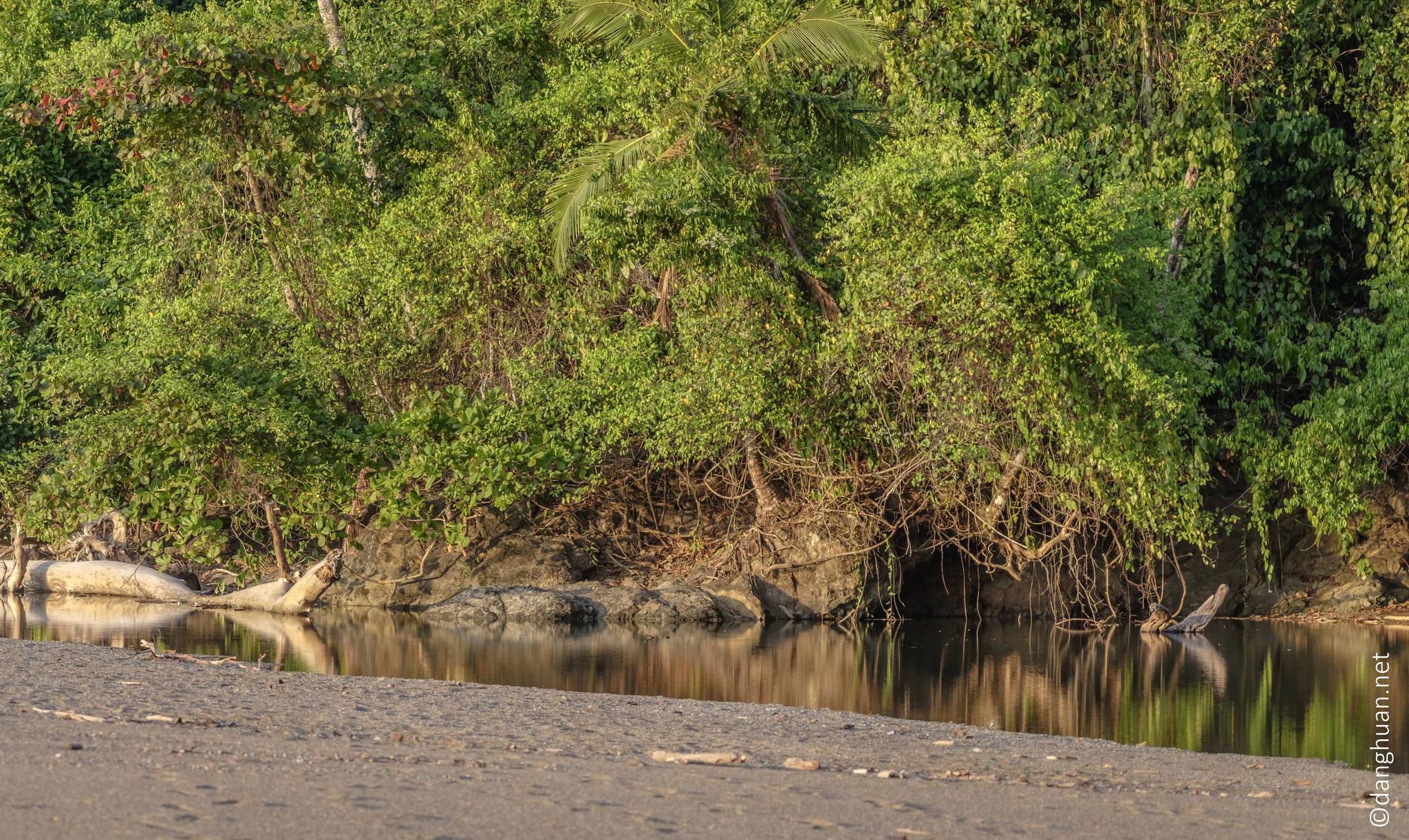 rio Claro, lac d'eau verte claire situé à proximité de la plage (océan pacifique)