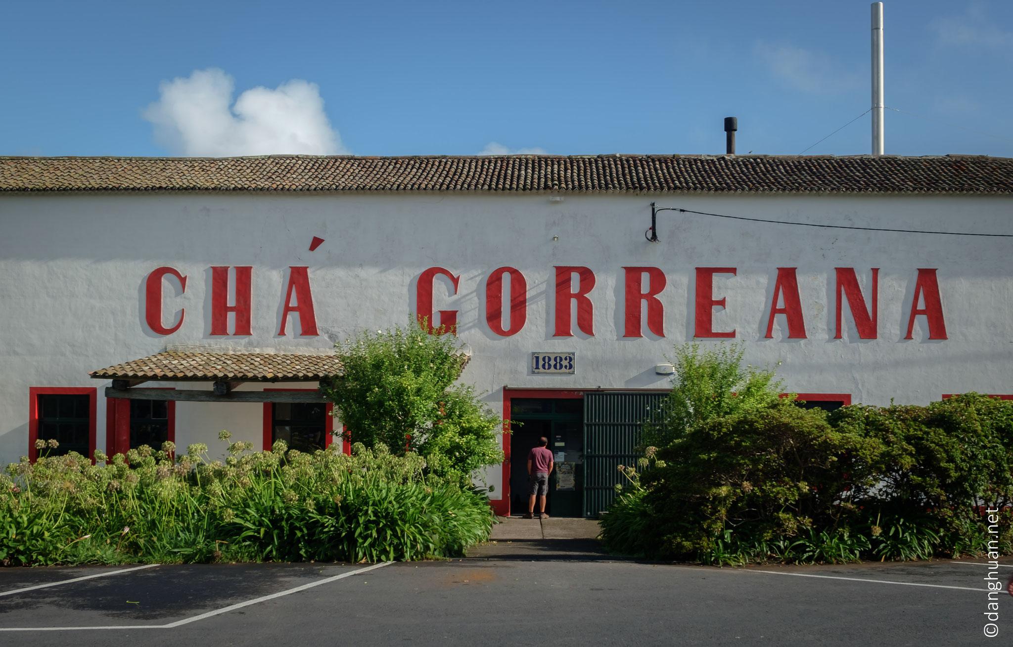 Chá Gorreana est une usine de thé et jardins historiques antiques datant de plus d'un siècle