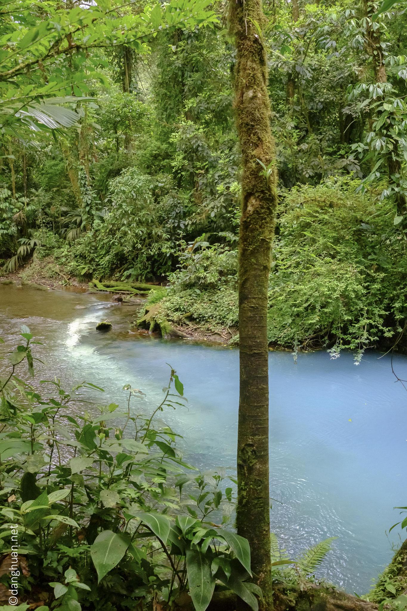 produit à la rencontre des 2 rivières : la Quebrada Agria (pH acide) et le Rio Buenavista (chargé en particules de silicates d'aluminium)...