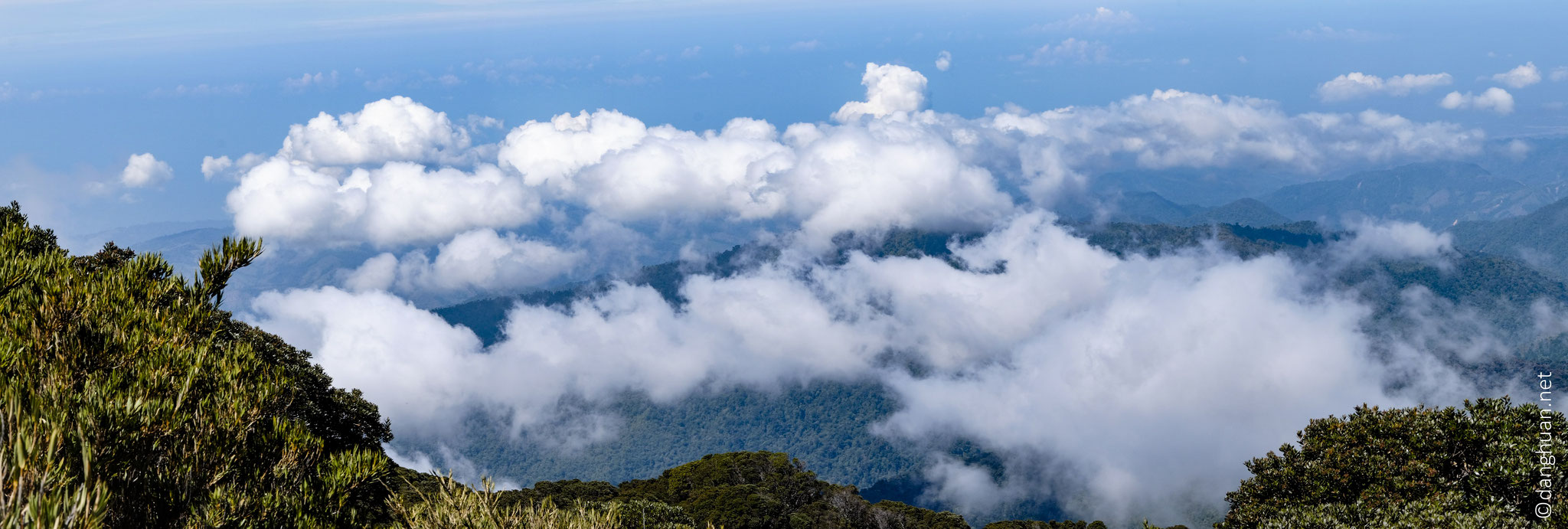 Descente de 1200m en 4H depuis le niveau des nuages de la forêt brumeuse de San Gerardo jusqu'à 2000m