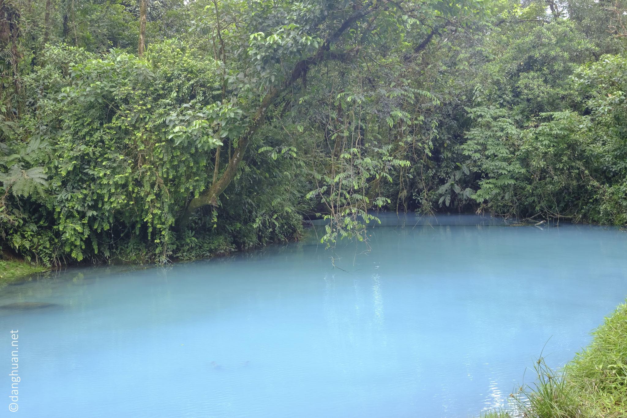 L'eau turquoise de la Rio Céleste du parc national du volcan Tenorio est due à un phénomène chimique...