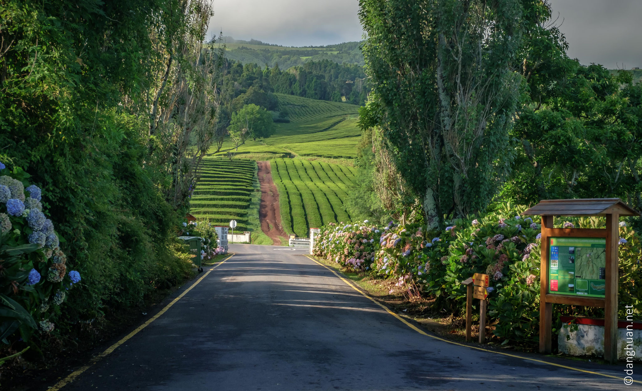 Elle se situe sur le versant nord de l'île de São Miguel, la plus grande île des Açores (commune de Ribeira Grande)