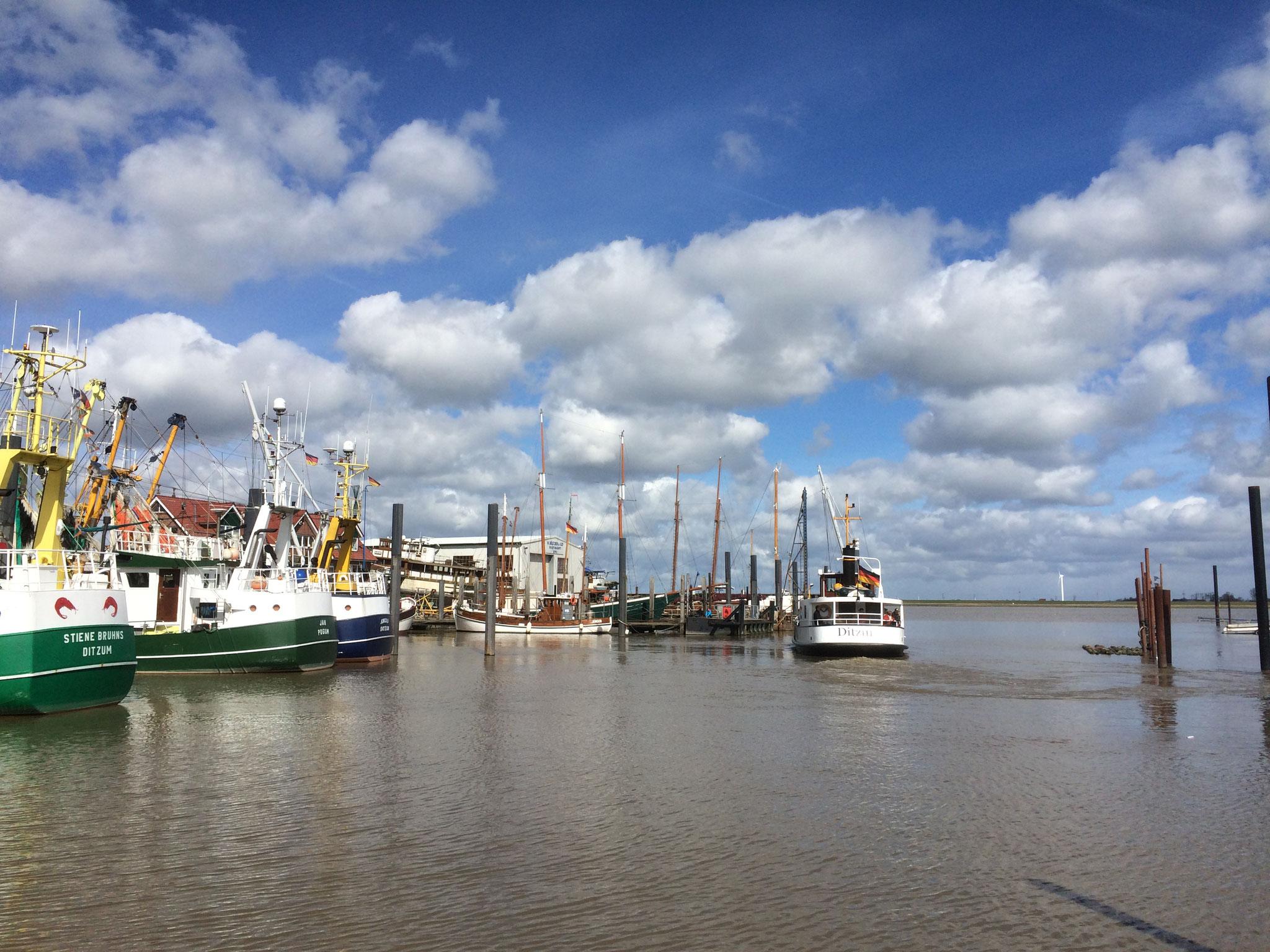 Hafen von Ditzum mit Blick über die Ems