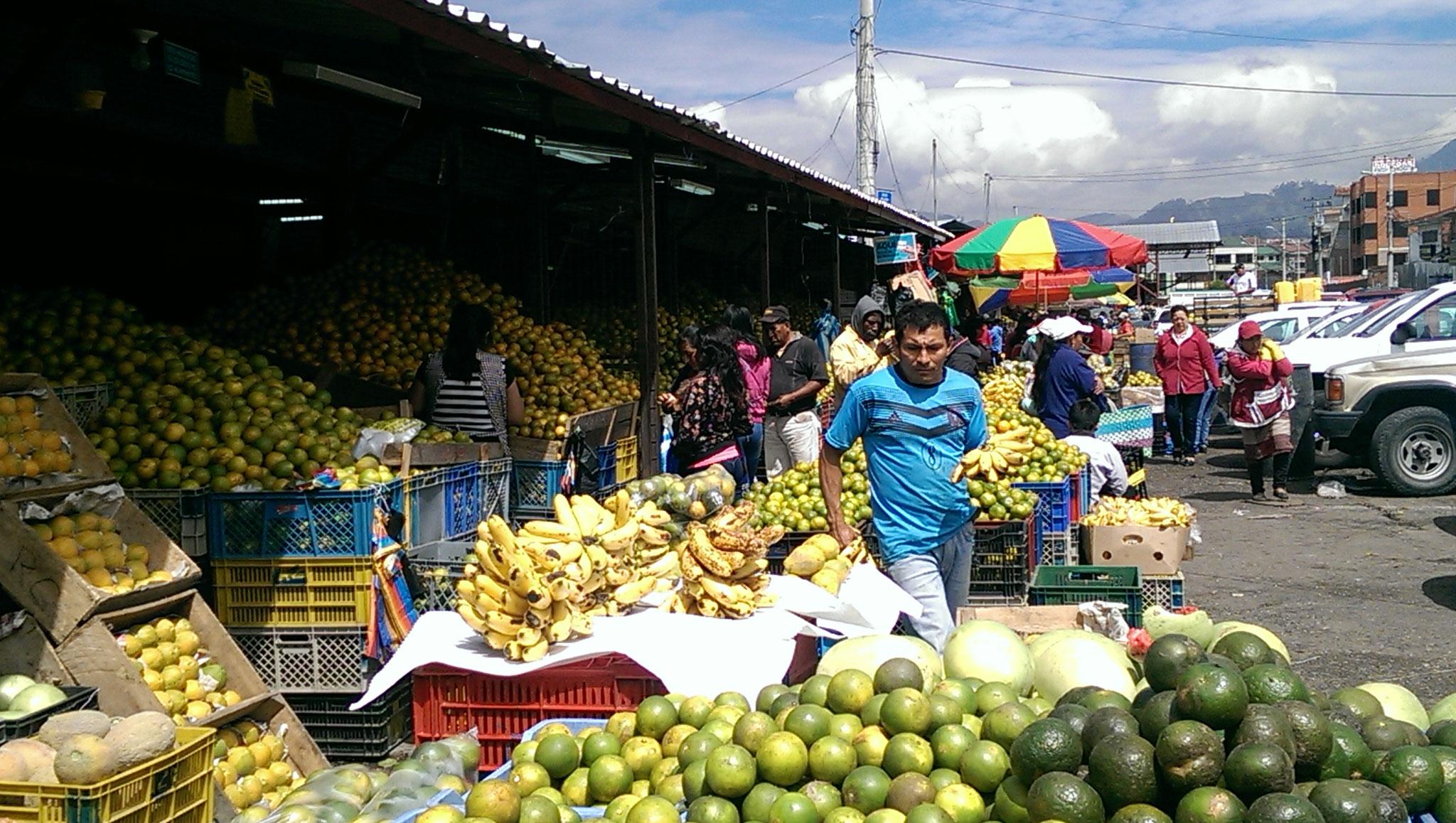 Markt in Cuenca. Wer will Orangen?