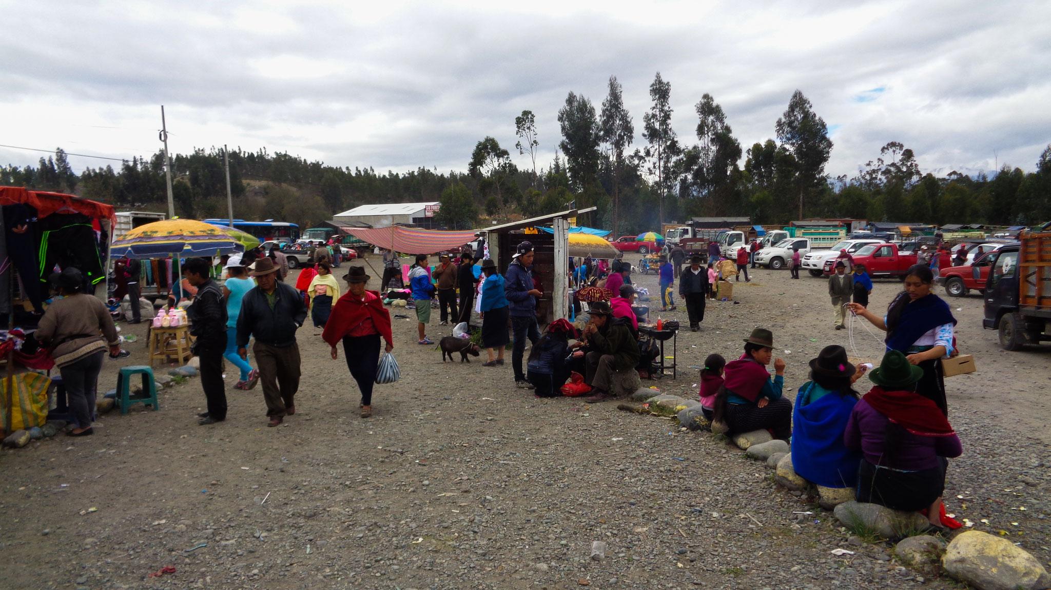 Viehmarkt nahe Riobamba