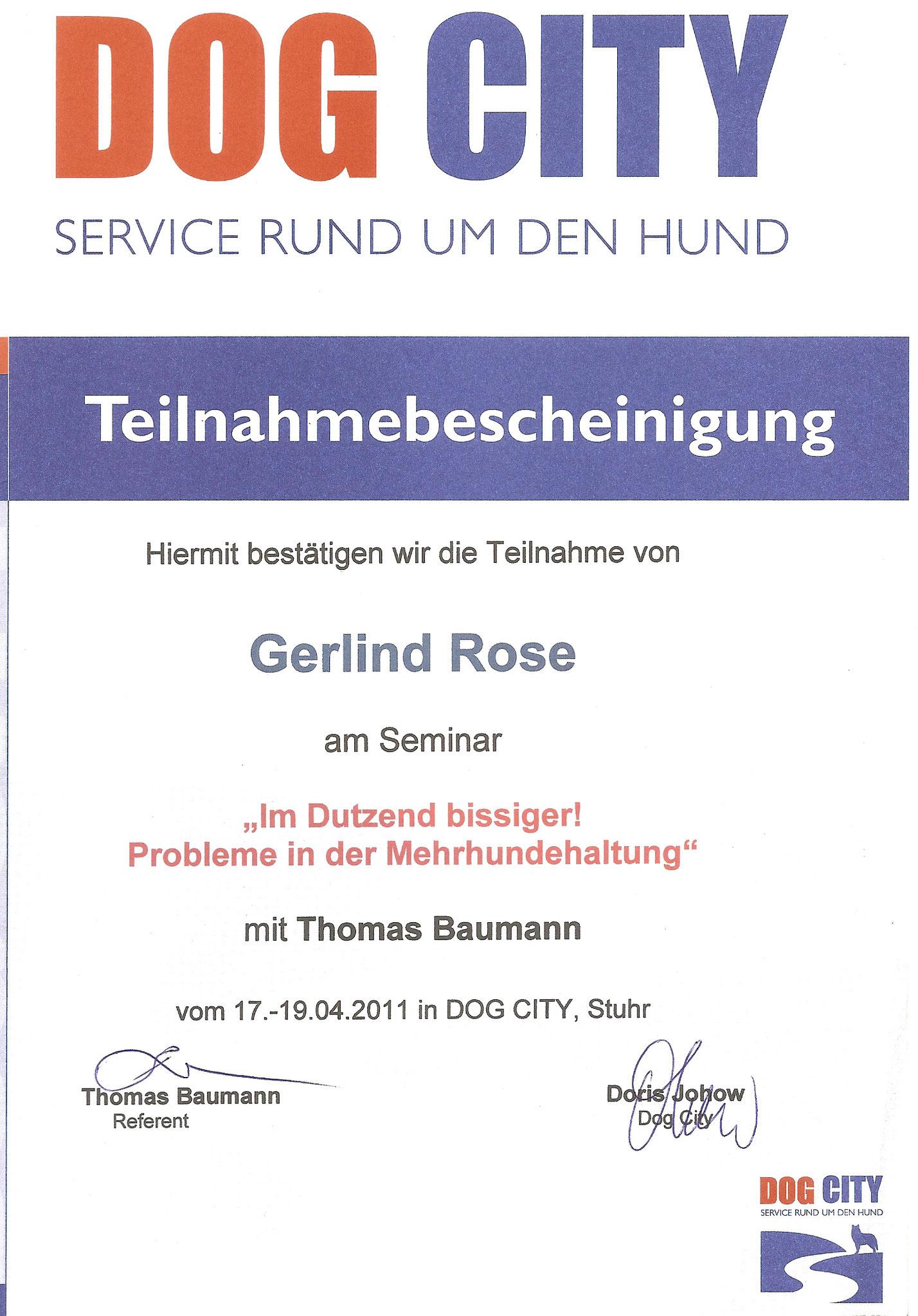 Im Dutzend bissiger / Mehrhundehaltung - Thomas Baumann