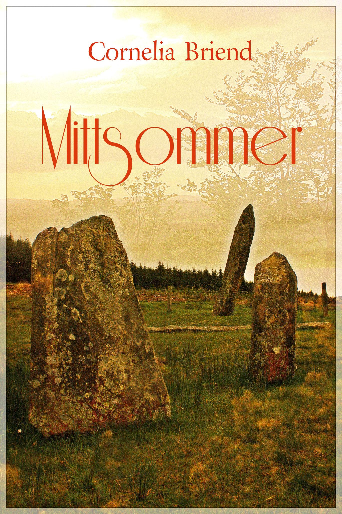 """Cover meiner Kurzgeschichte aus der Anthologie """"13 gegen das Sommerloch"""""""