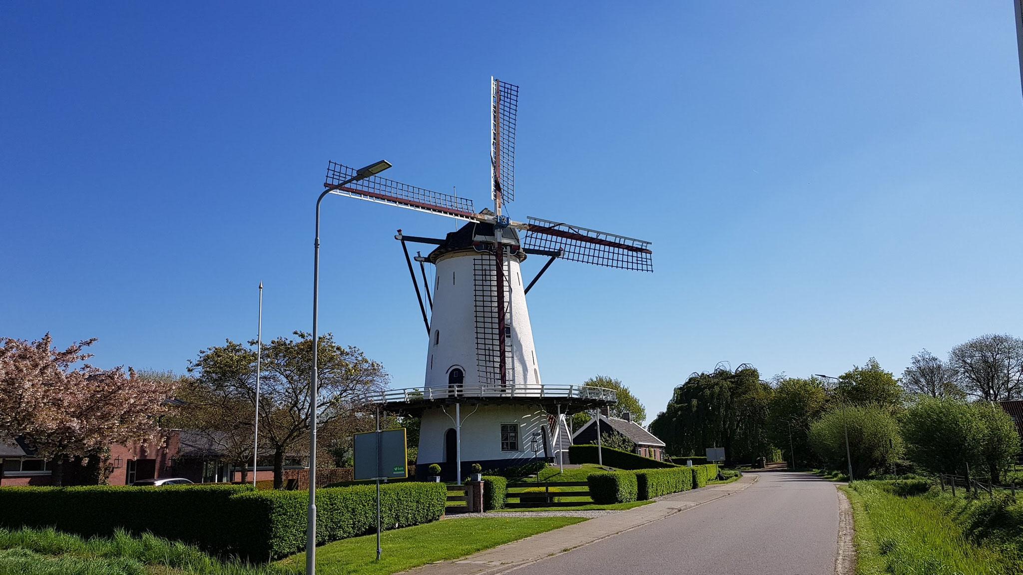 Mühle bei Kloetinge