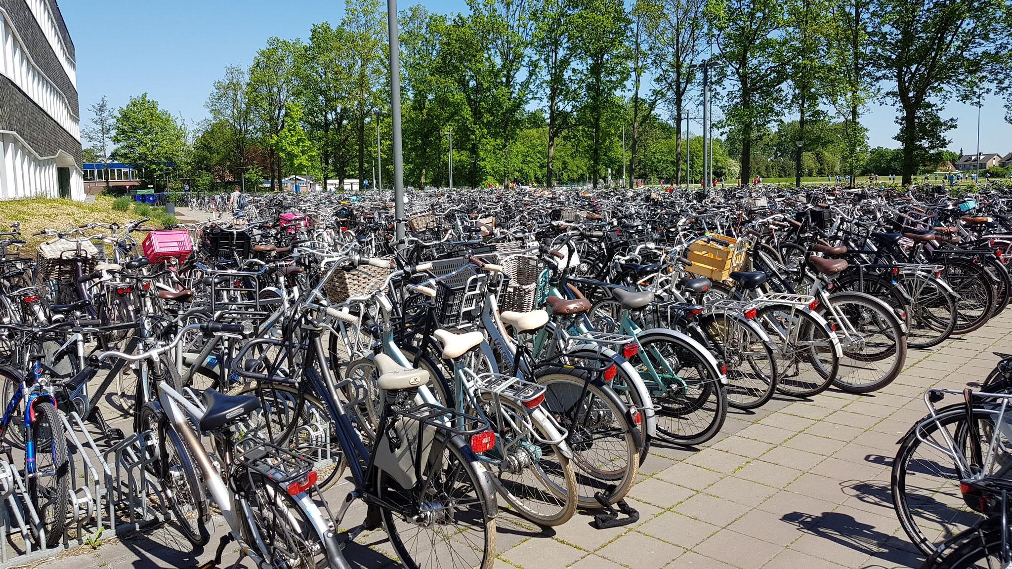 Suchbild: Wo steht mein Fahrrad?
