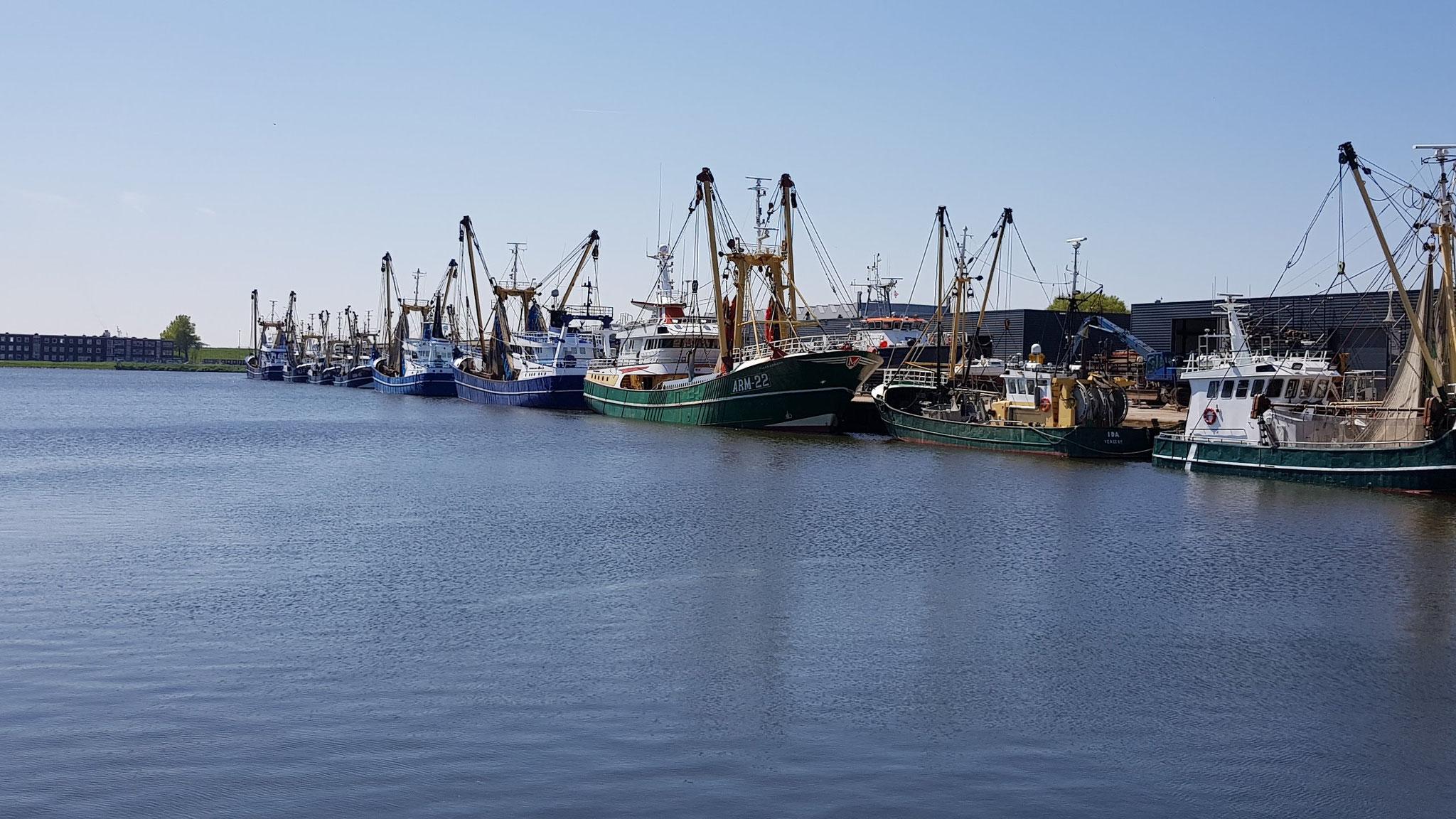 Hafen Vlissingen