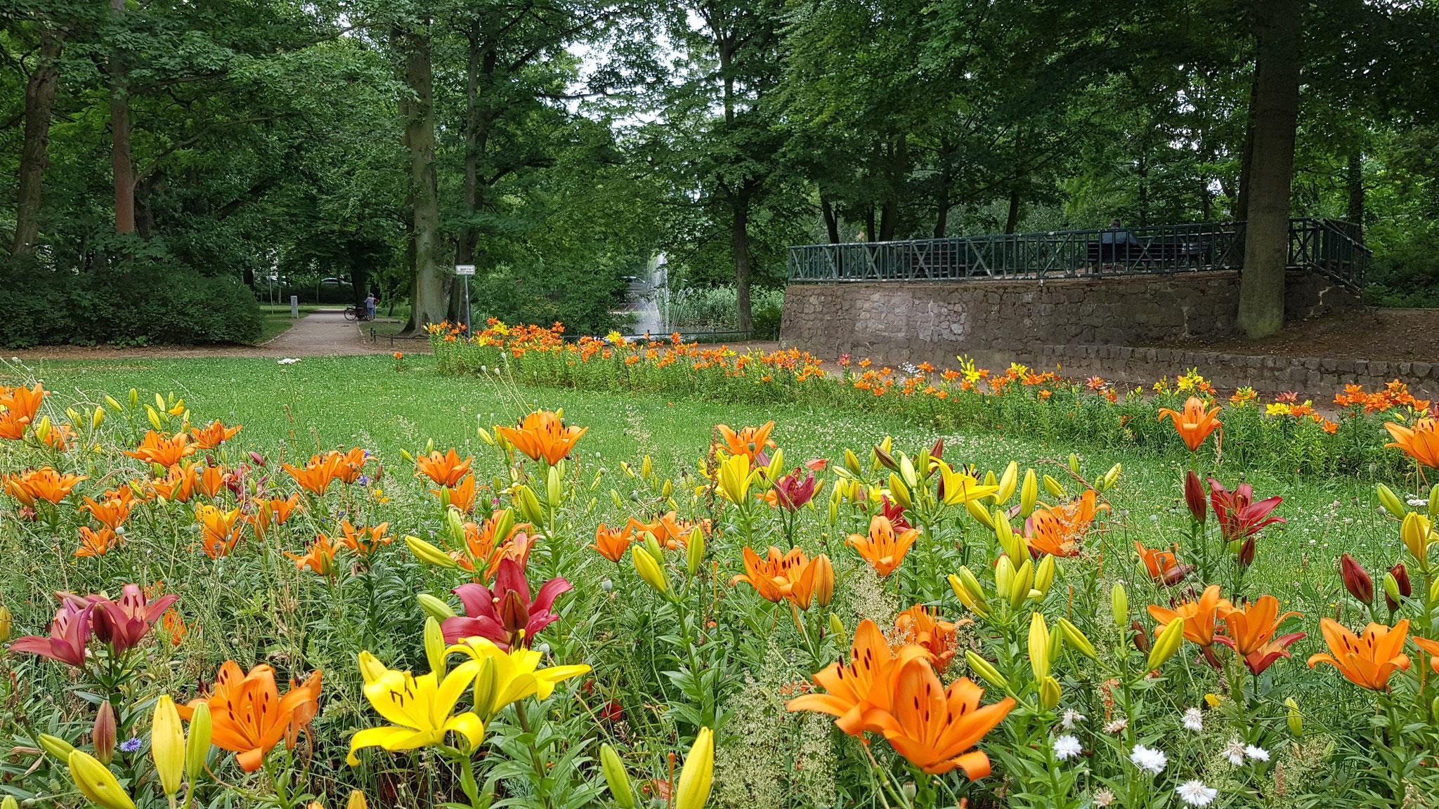 Stadtpark Bernau