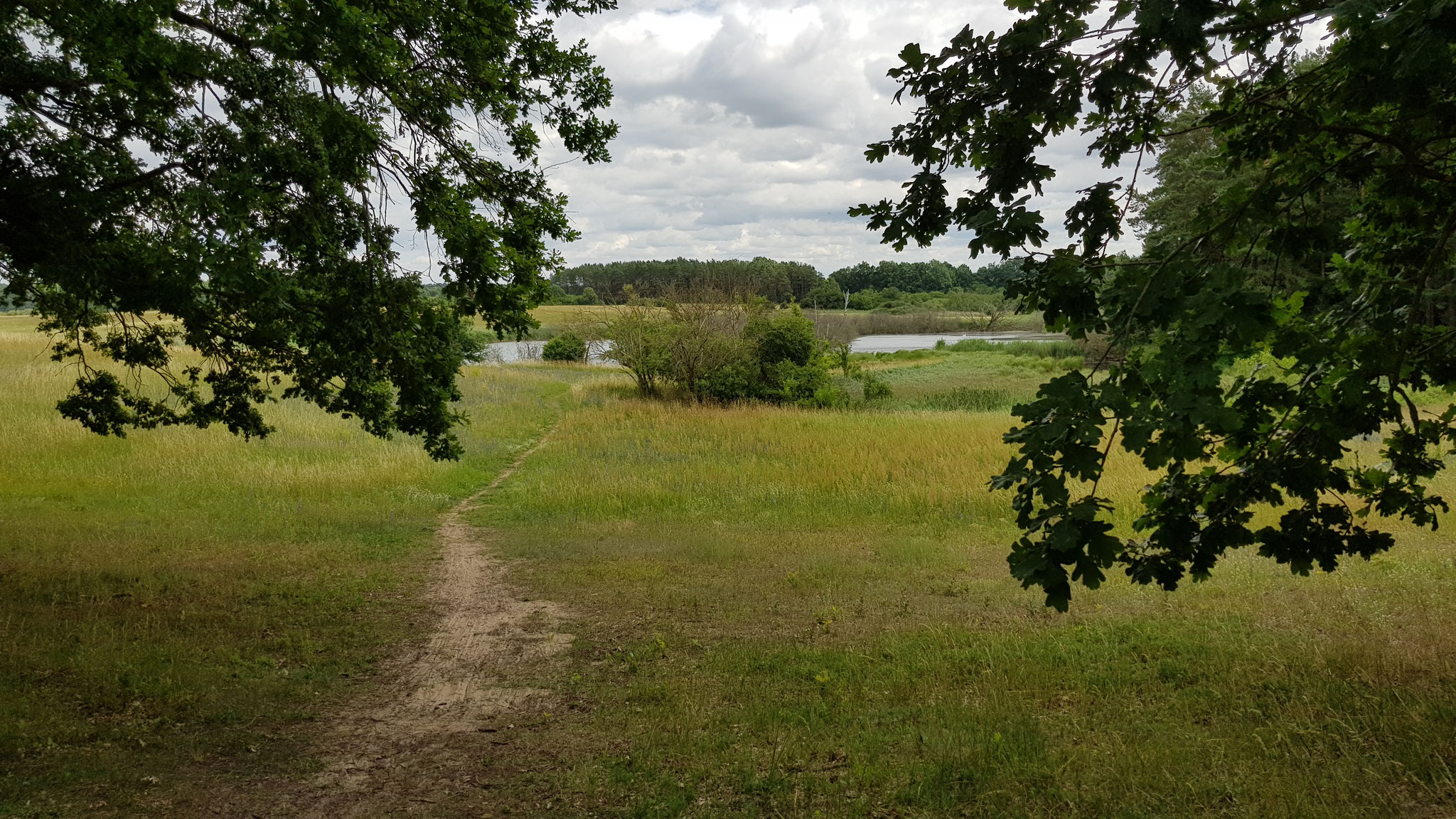 Naturschutzgebiet Biesenthaler Becken