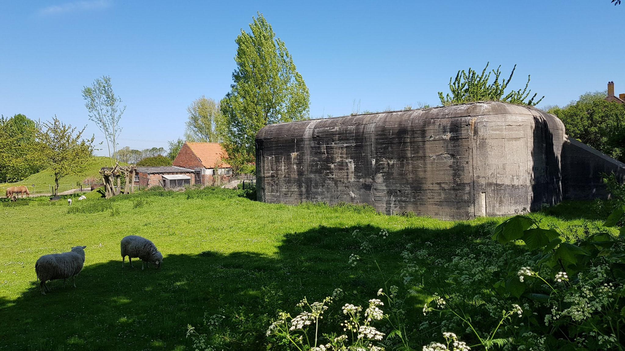 Bunker bei Ritthem
