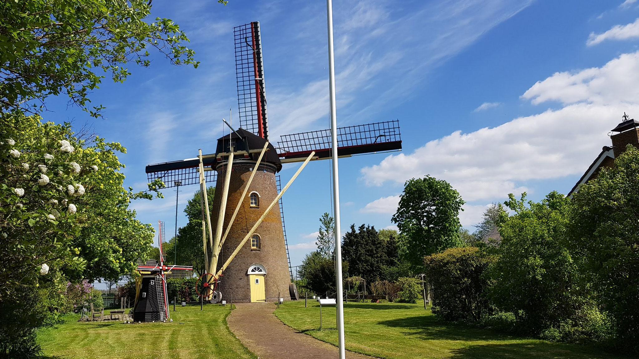 Mühle bei Hoedekenskerke