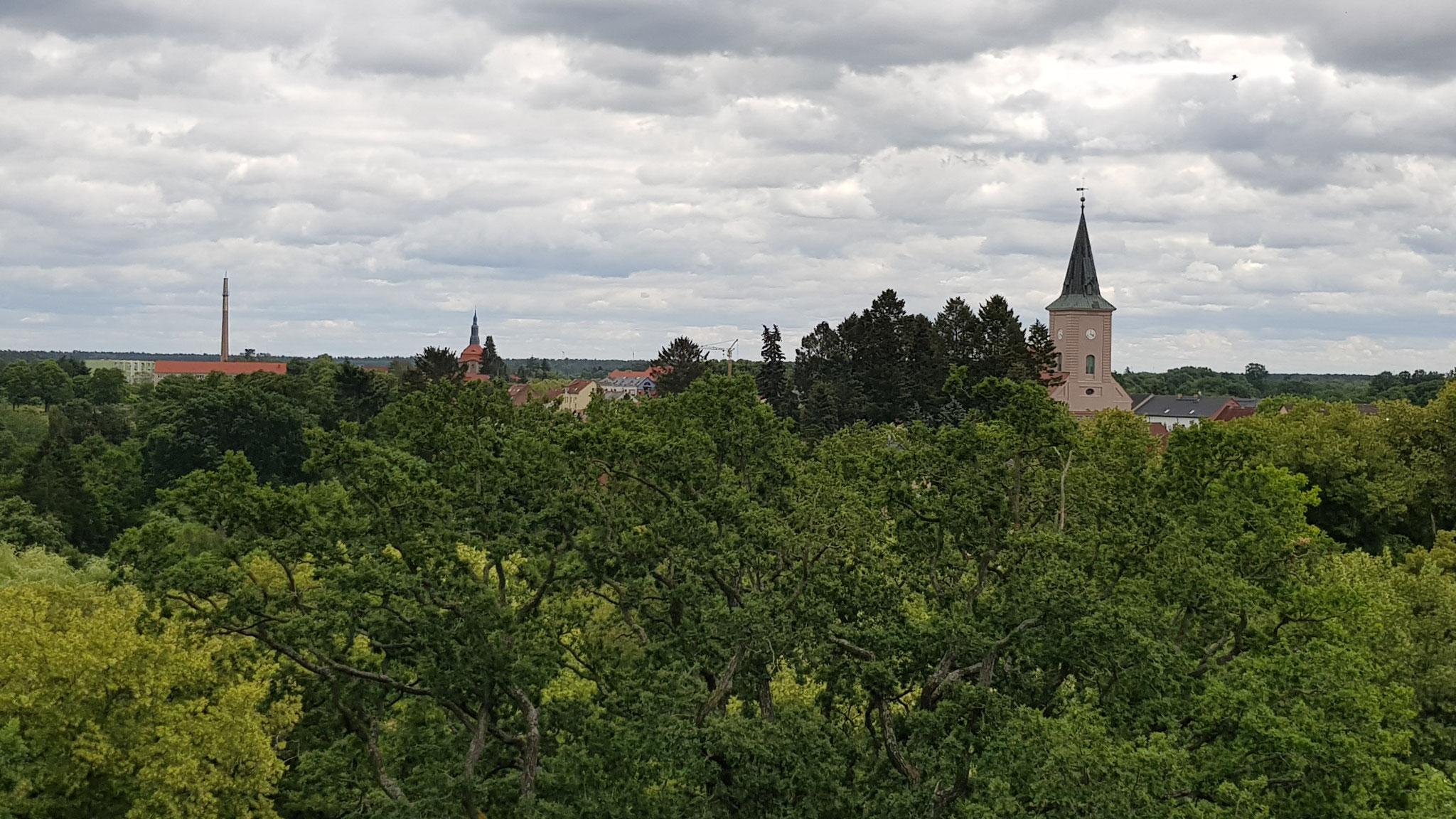 Biesenthal vom Kaiser- Friedrich Turm