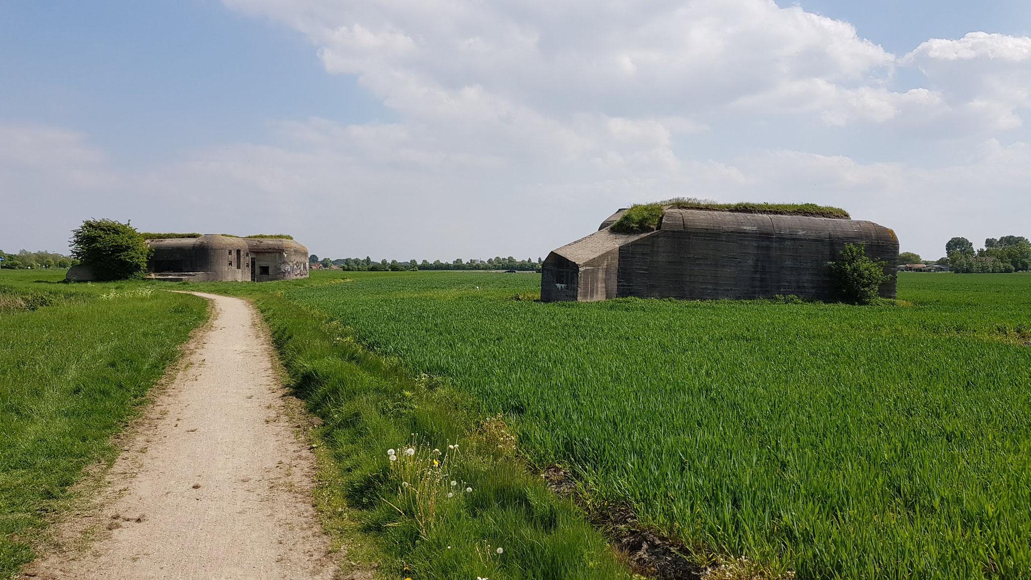 Bunker der Landfront Vlissingen