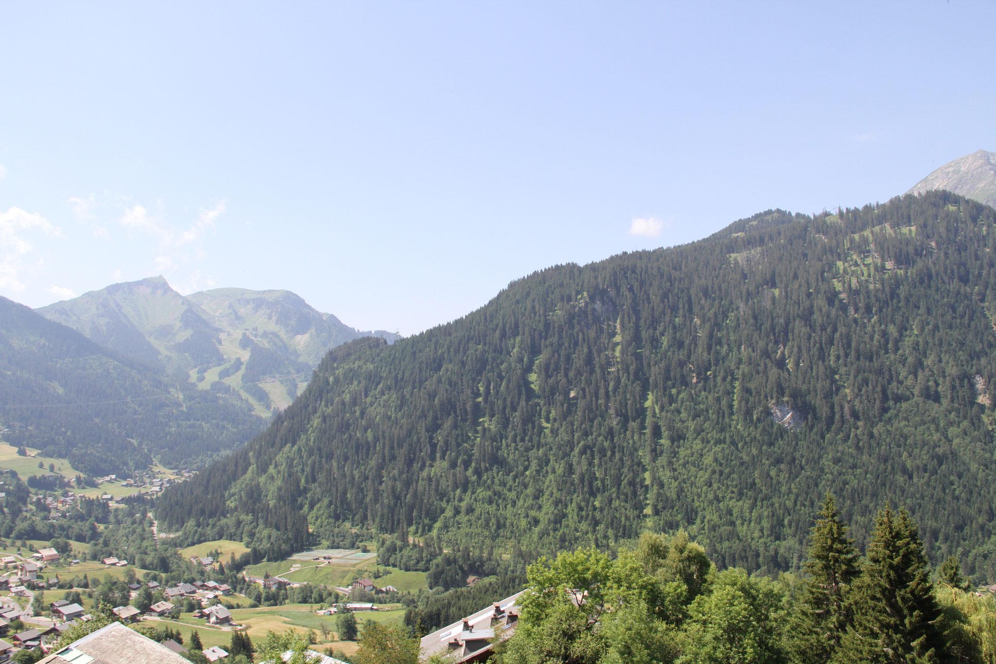 Vue du chalet Pensée des Alpes