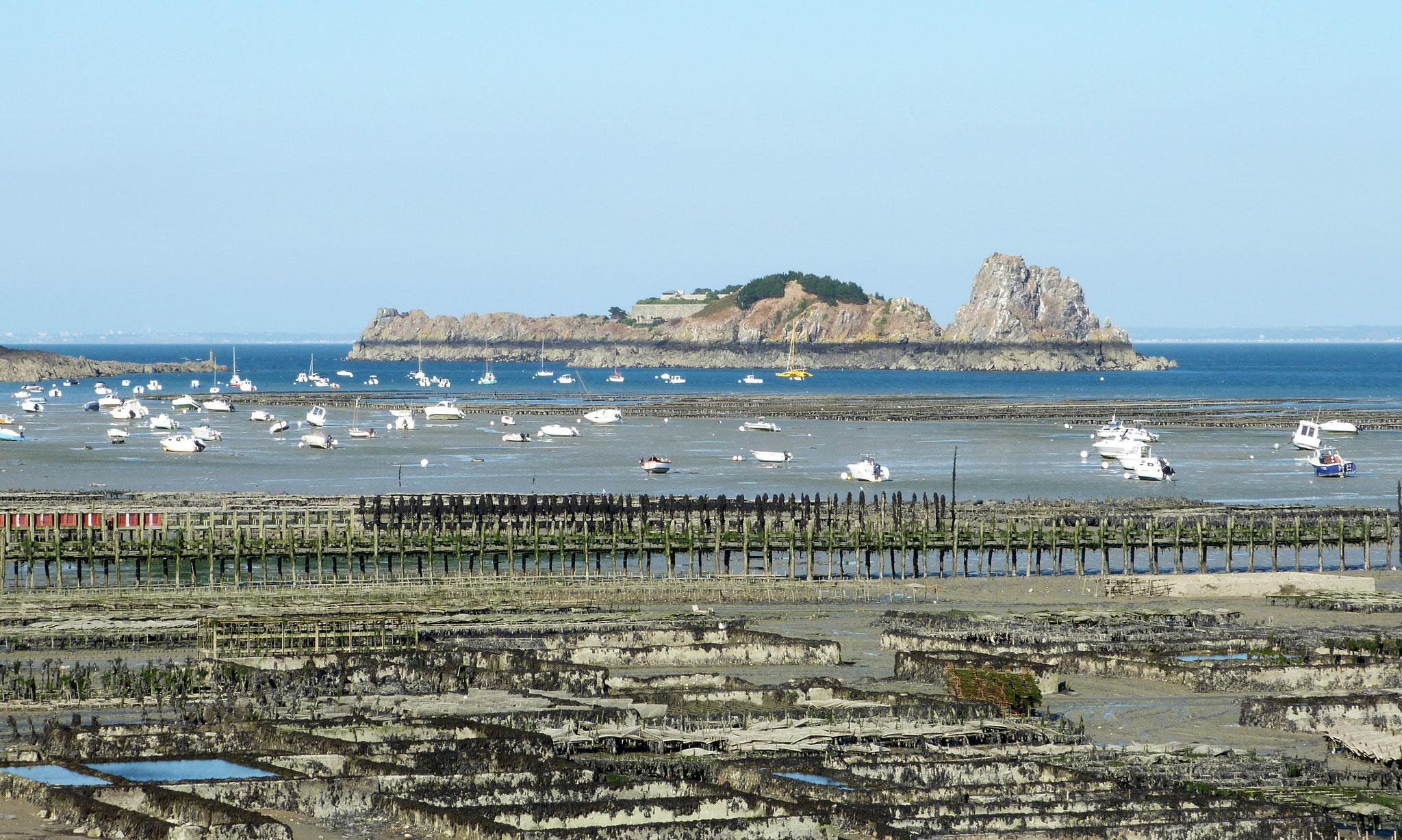 Les parcs à huîtres, le Rocher de Cancale et l'ile des Rimains