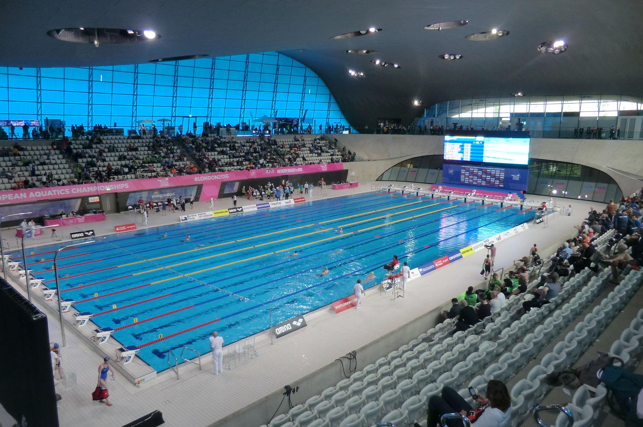 heureusement pour ceux qui réussisent à nager dans le bassin olympique, ça vaut le coup d'oeil