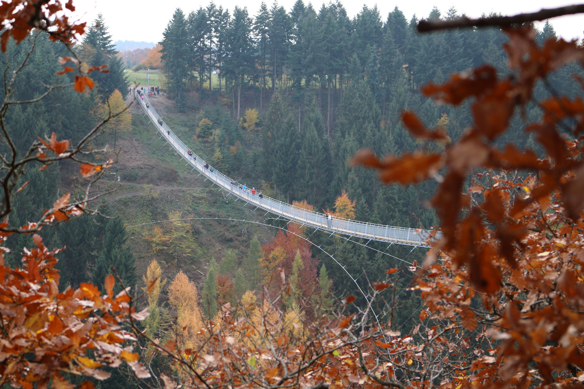 Die Hängeseilbrücke Geierlay bei Mörsdorf