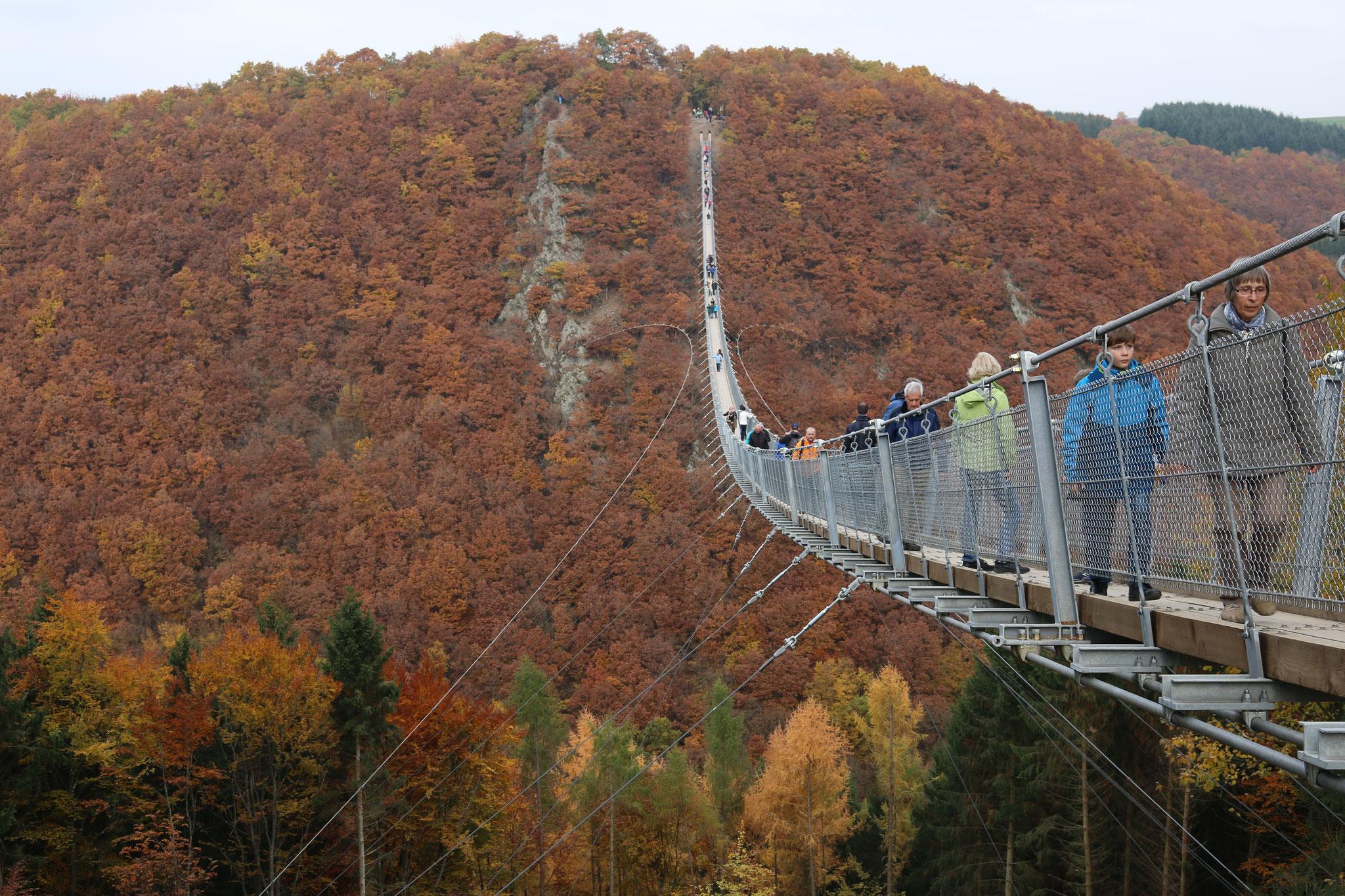 Mit 360 m Länge einer der längsten BrückenHängeseilbrücken Deuschlands