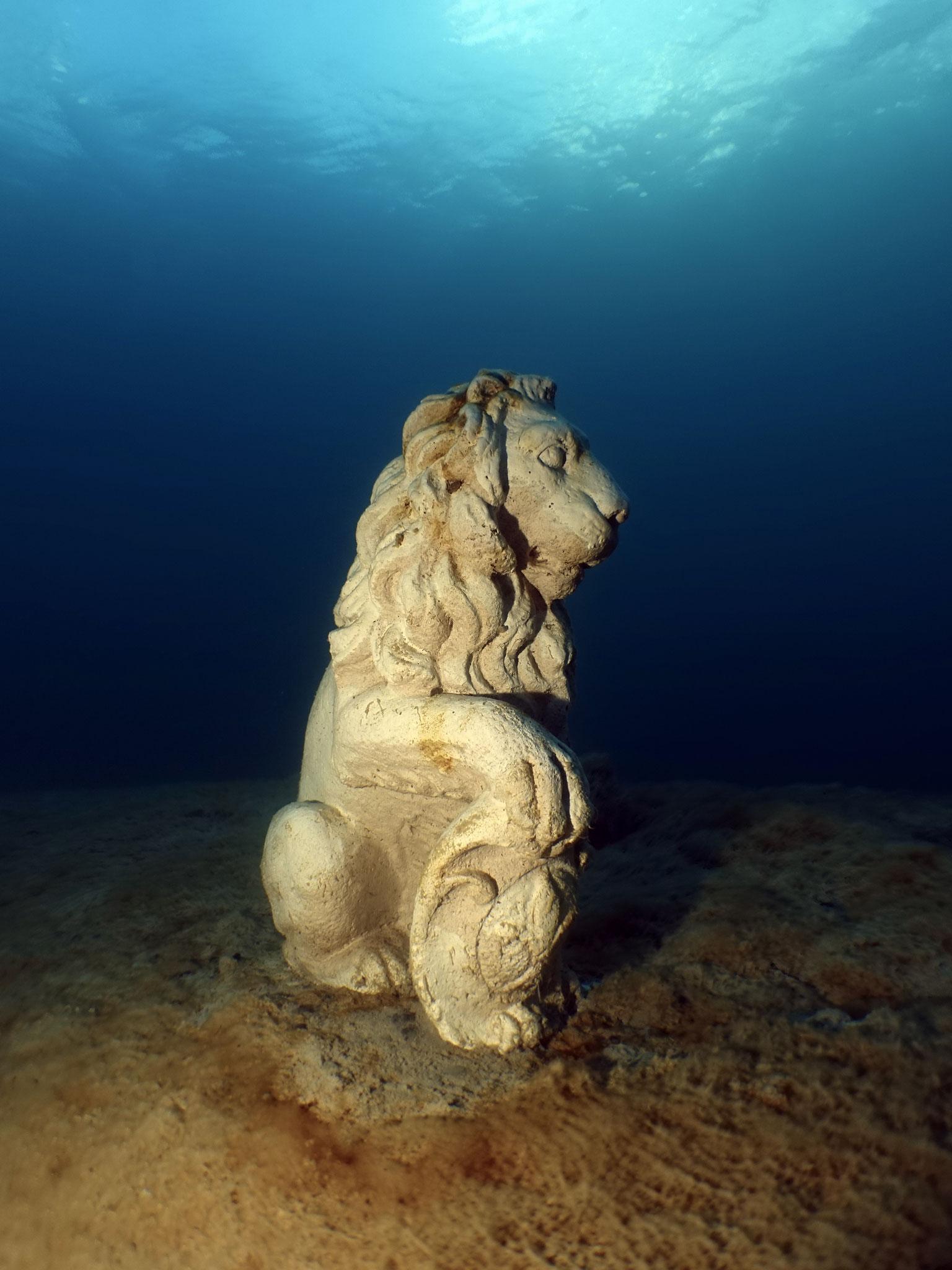 Le lion, emblème de Martigny, génial pour Ti-Plunch