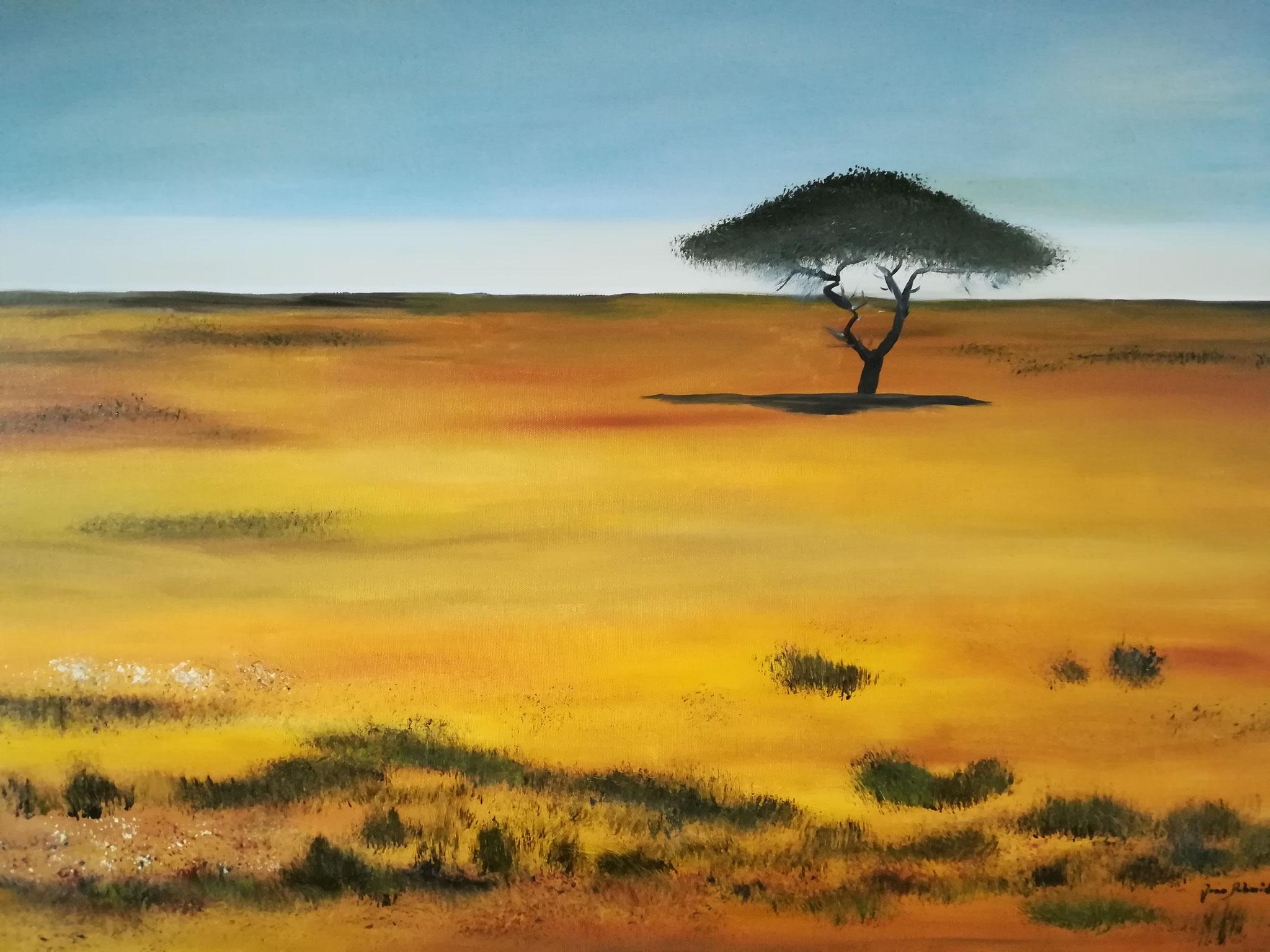 Namibia 70 x 100 Öl auf 3D Keilrahmen