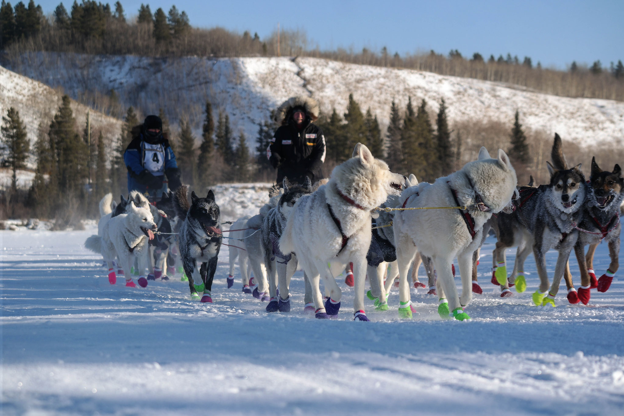 Yes he will! The second dog sled team overtakes!