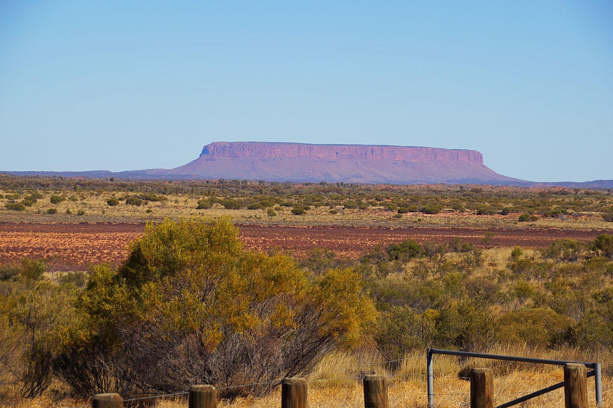 Der Uluru (Ayers Rock): schon aus der Ferne eine Attraktion.