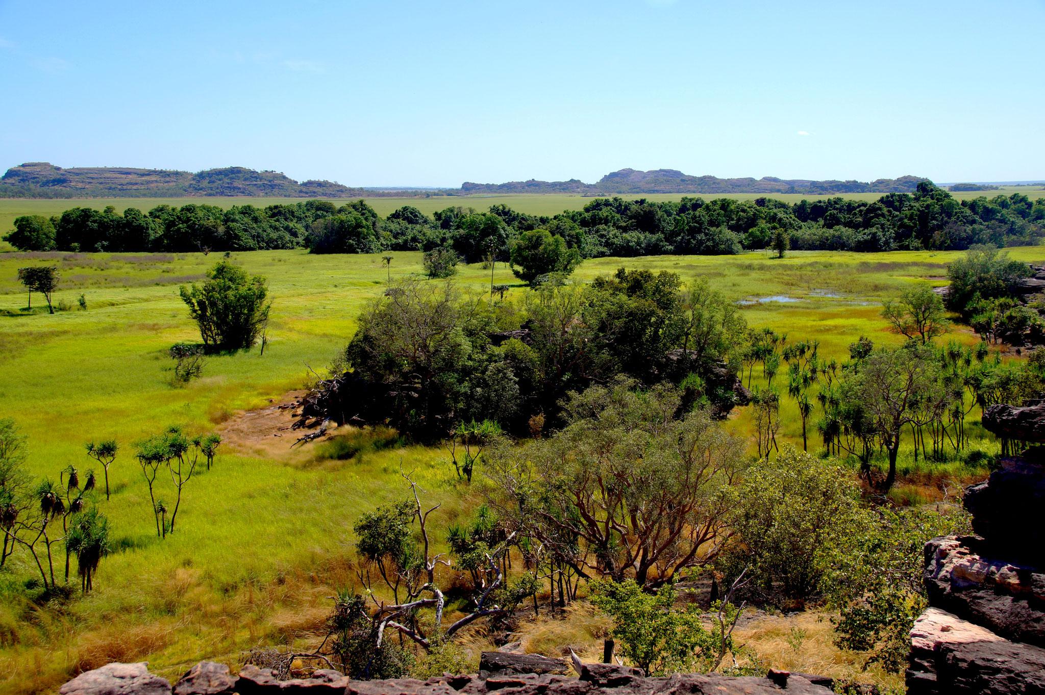 Ausblick vom Ubirr Felsplateau auf die Floodplains des Kakadu Nationalparks.