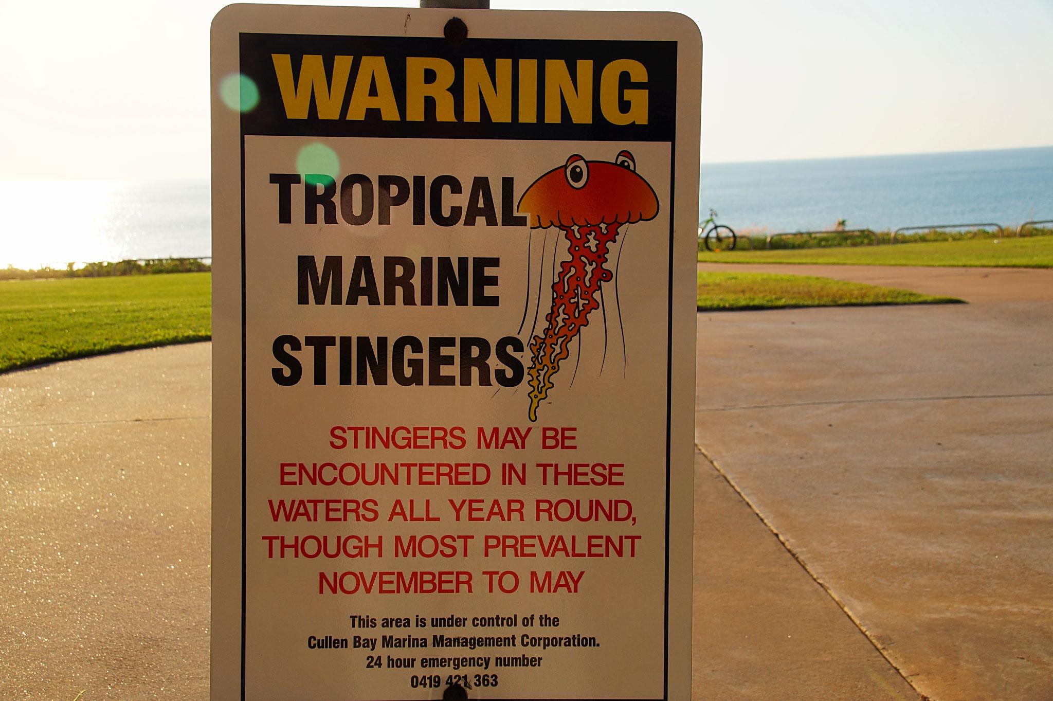 Doch an Darwins Küste es gibt Giftquellen, Krokodile, Haie und Rip Currents.