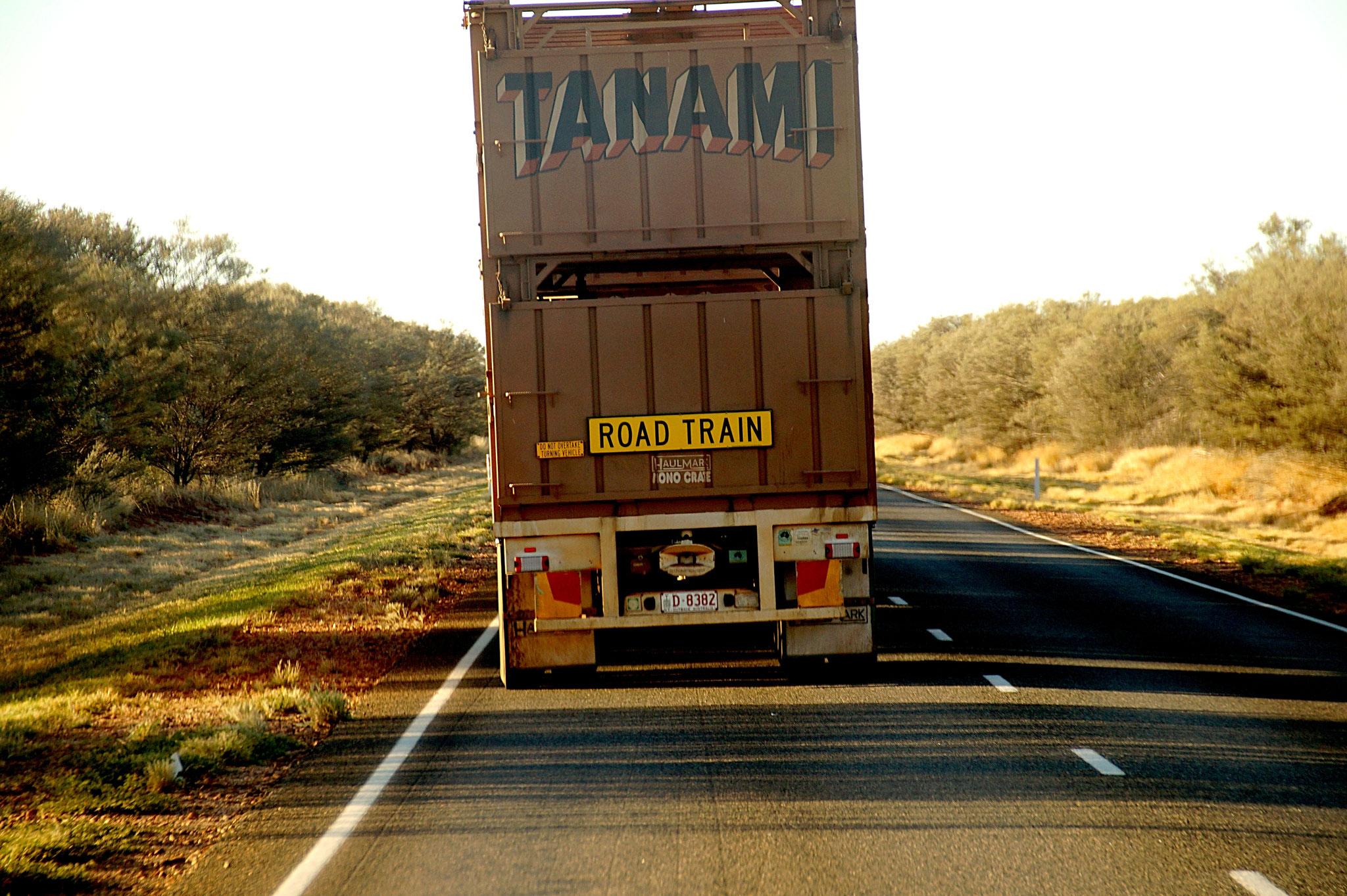 Im Outback begegnet Ihr den riesigen Road Trains.