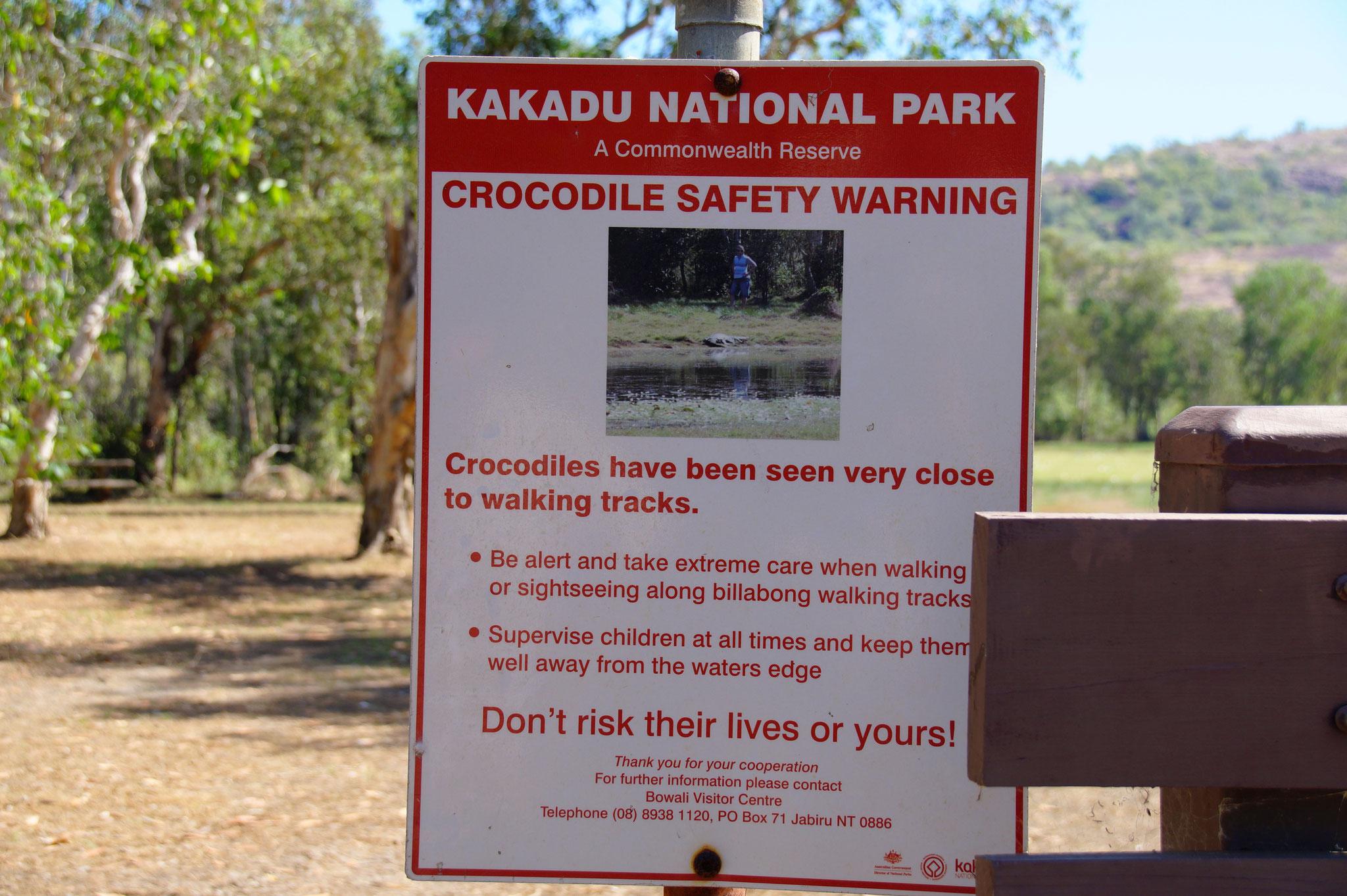 An den Ufern von Australiens Billabongs lauern Krokodile.