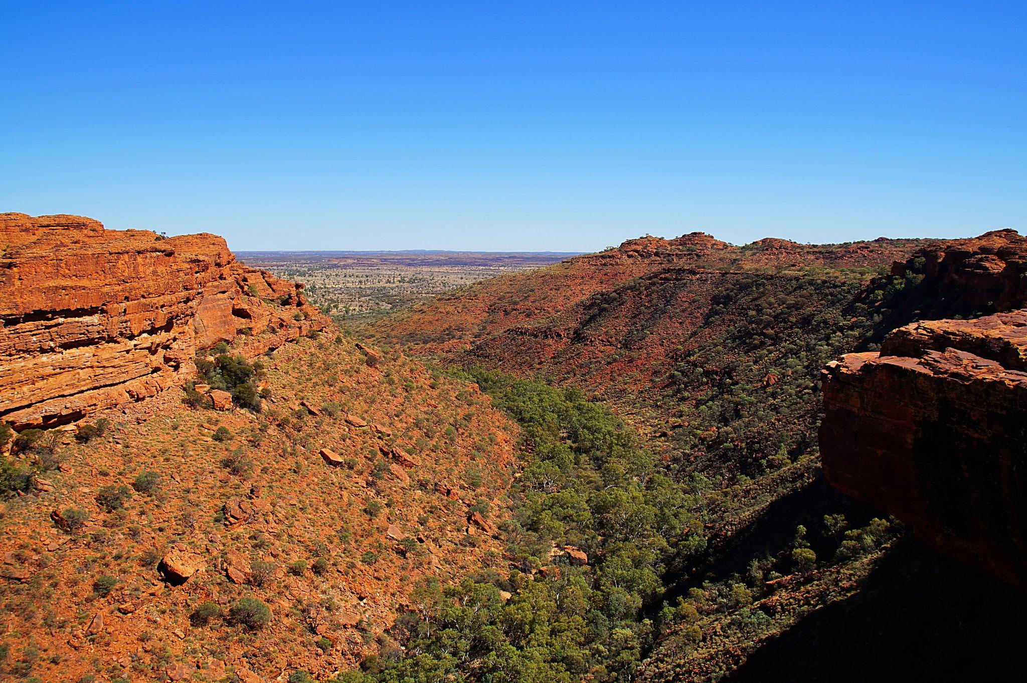 Der Kings Canyon aus der Vogelperspeltive.