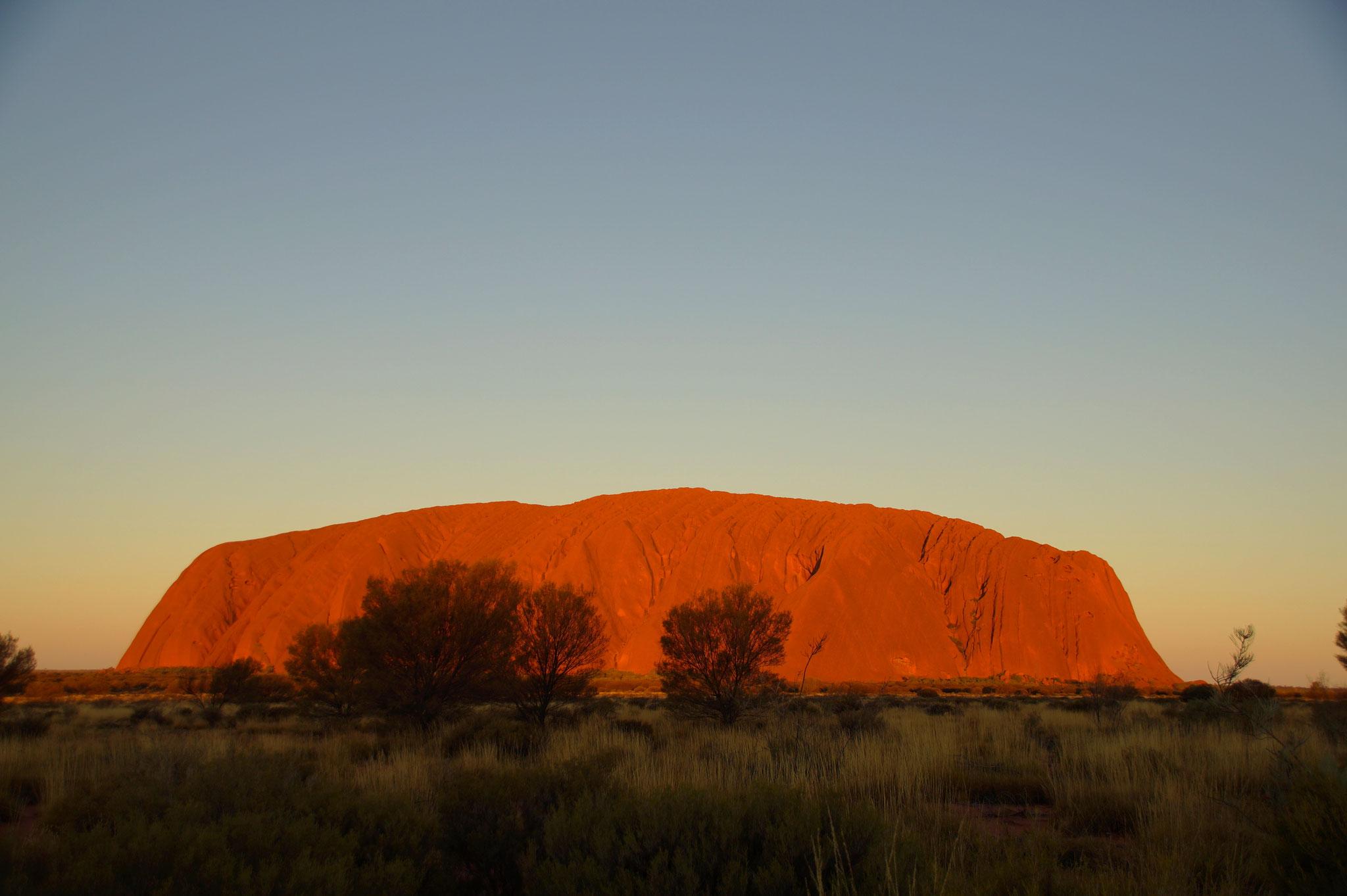Bei Sonnenuntergang leuchtet der Uluru in wechselnden Farben.
