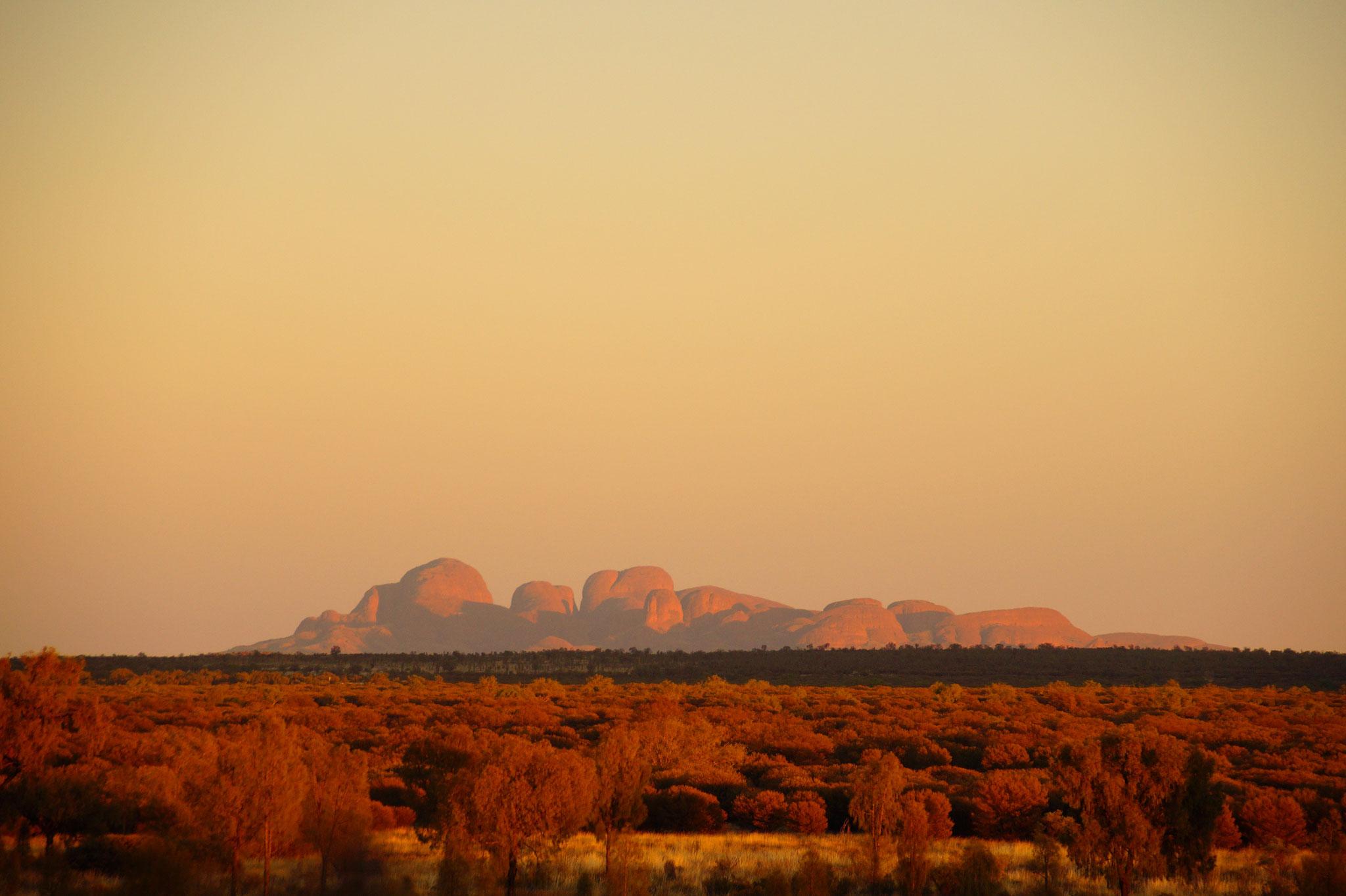Kata Tjuta im Morgendunst vom Uluru aus gesehen.