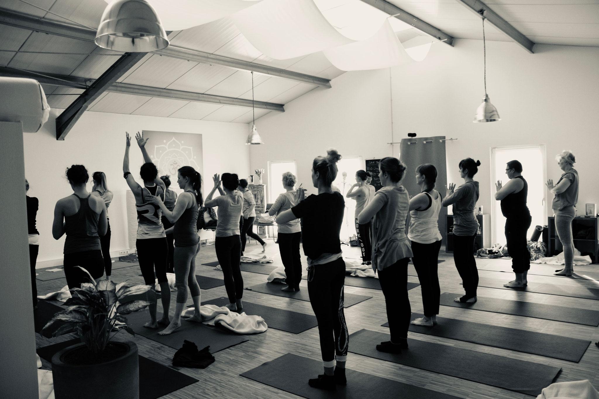 Hatha Yogakurs bei Yamida - Yogaschule Lüdinghausen Selm, Nordkirchen, Ascheberg, Cappenberg, Olfen, Senden