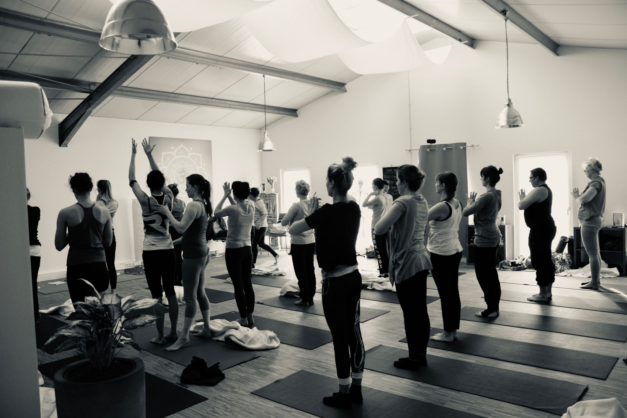 Hatha Yogakurs bei Yamida - Yogaschule  Yoga Lüdinghausen, Datteln, Selm, Nordkirchen, Ascheberg, Cappenberg, Olfen, Senden