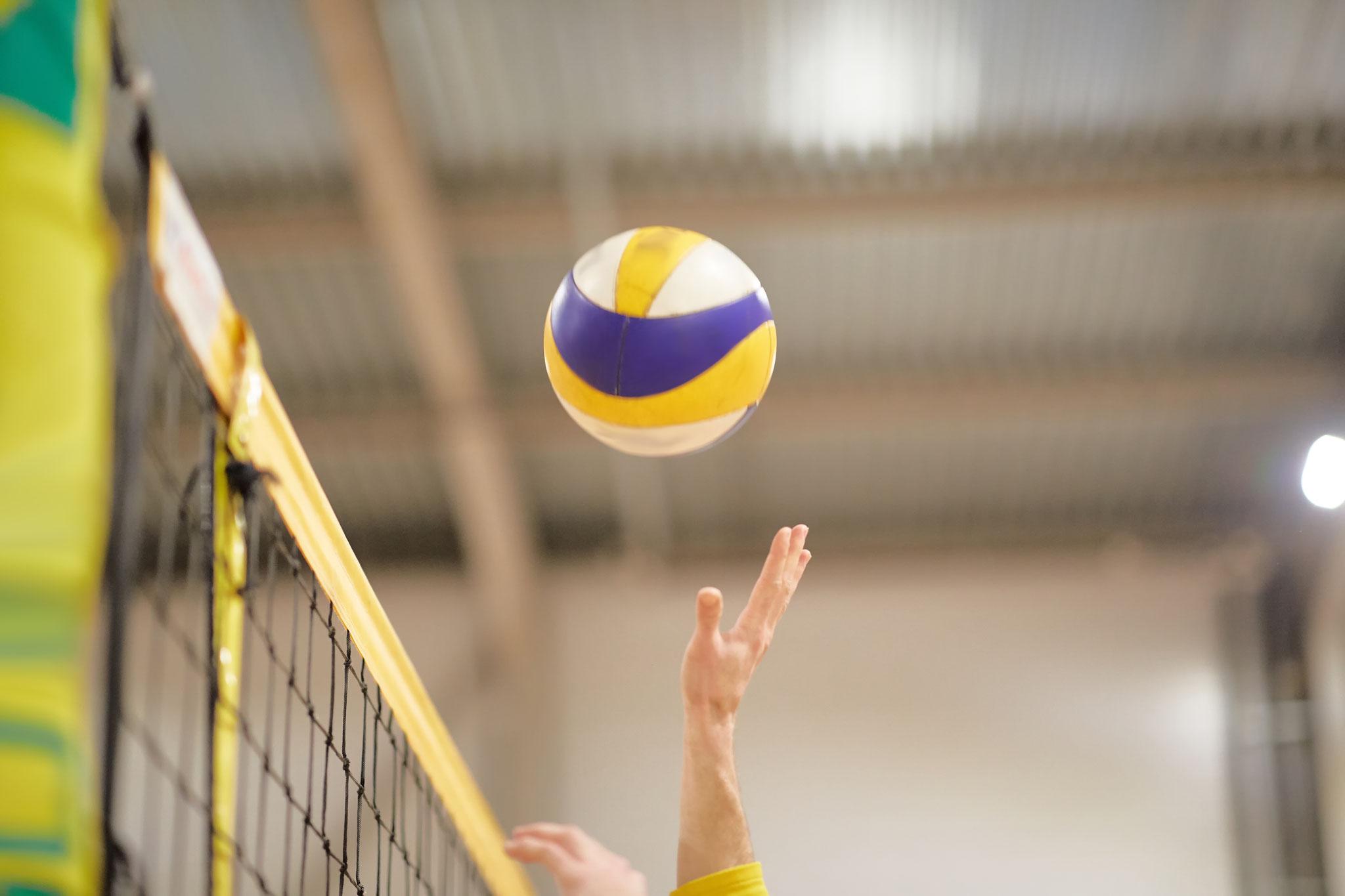 Fr, 20.08. | 19.30-22.00 Uhr: Volleyball | Turnhalle Grundschule am Bürgerpark | © Alex, Adobe Stock