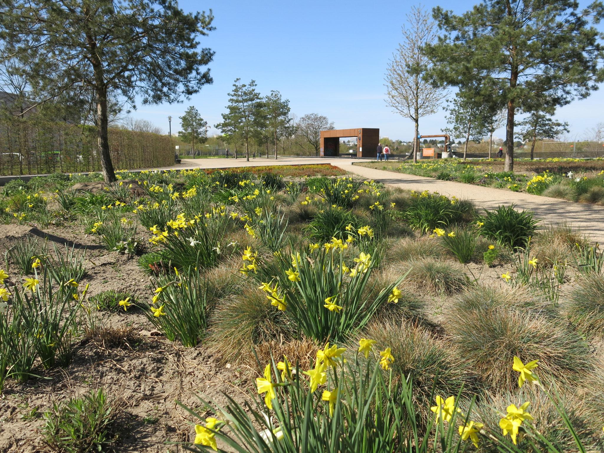Tipp 9: Kienberg: Das Entrée der Tour bildet der für die IGA angelegte Stadtplatz mit dem Märkischen Garten.