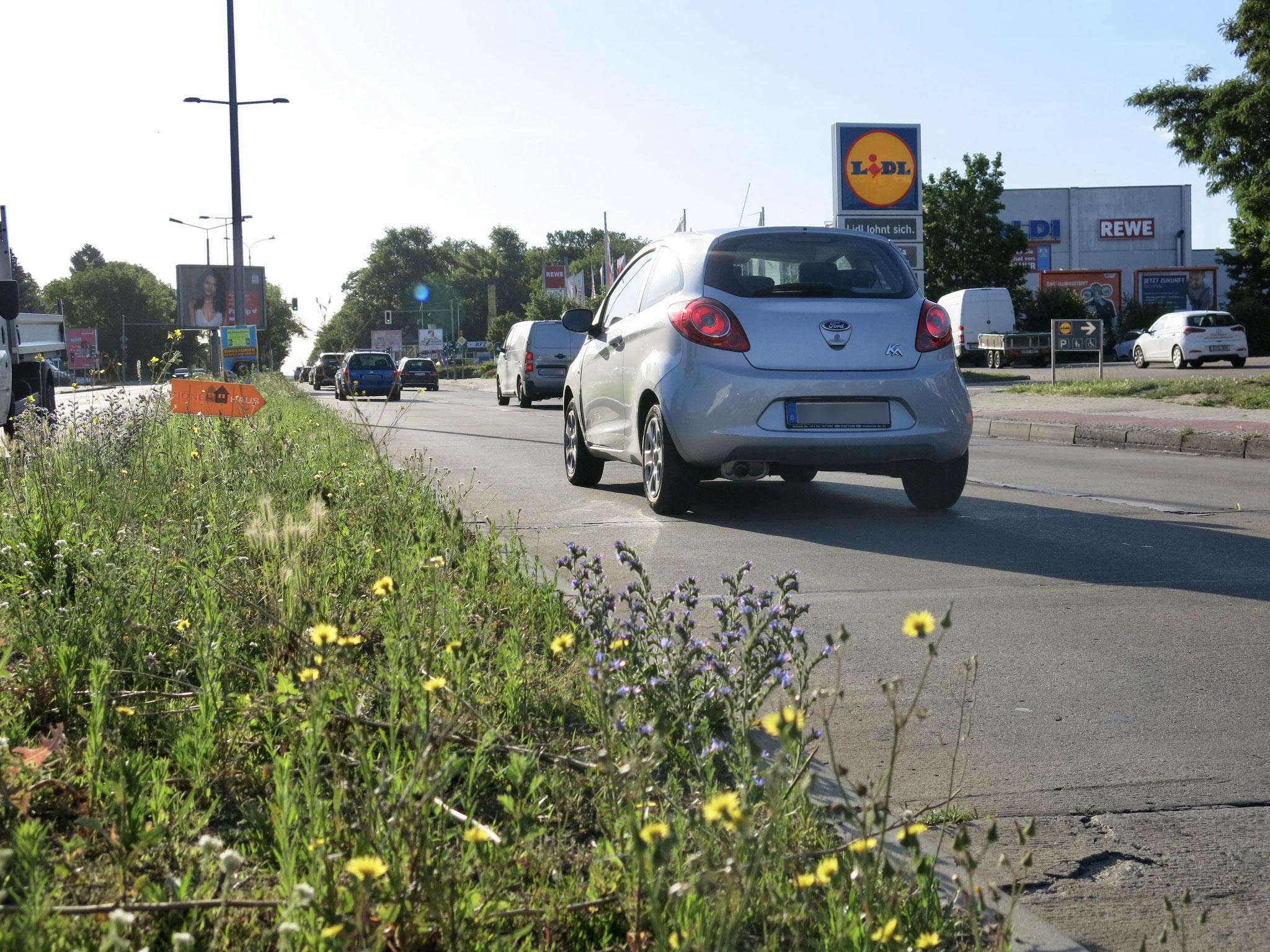 20. Juli bis 30. August. B1/B5 stadtauswärts: Fahrbahnverengung auf eine Spur zwischen Chemnitzer Straße und Myslowitzer Straße