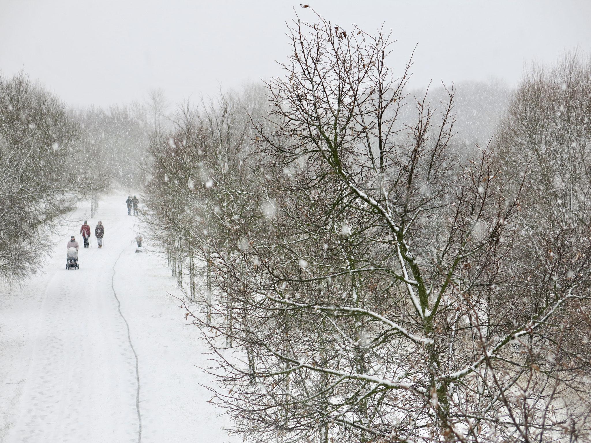 Wuhletal-Wanderweg