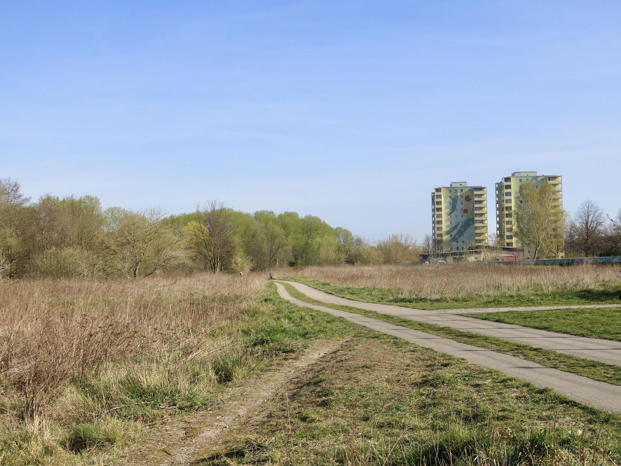 Tipp 1: Nördlicher Wuhletal-Wanderweg, Sonnenblumenhäuser