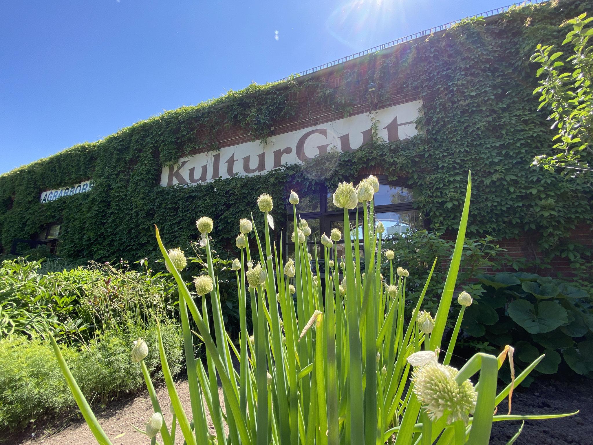 So, 13.06., 10.00-18.00 Uhr: KUNST: offen! 36 Werkstätten, Galerien und Ateliers in Marzahn-Hellersdorf öffnen ihre Türen.