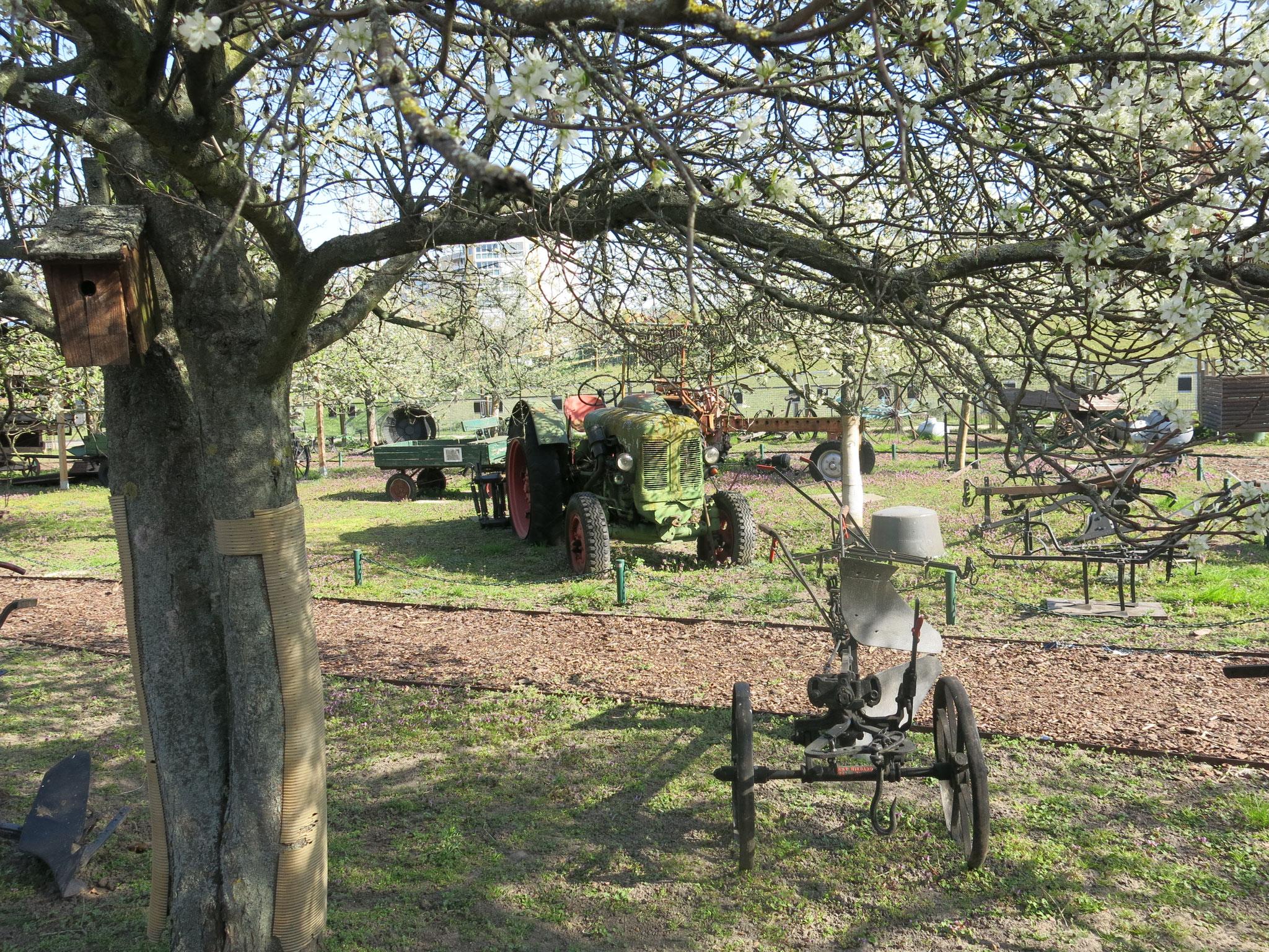 Tipp 10: Alt-Marzahn: Gleich nebenan befindet sich eine Open-Air-Ausstellung historischer Landmaschinen.
