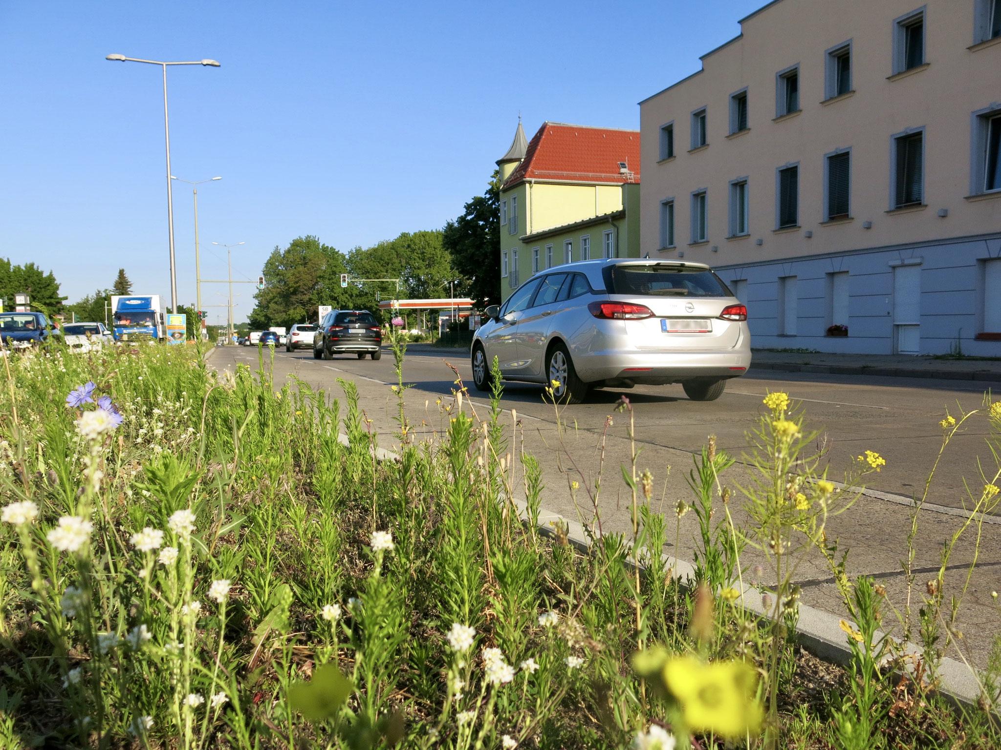 1. bis 17. Juli. B1/B5 stadteinwärts: Fahrbahnverengung auf eine Spur zwischen Myslowitzer Straße und Mädewalder Weg