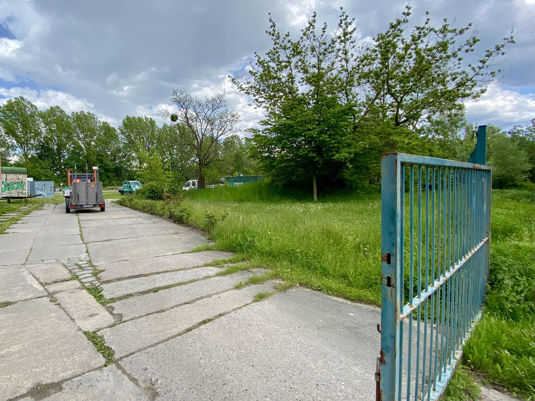 ... startet die neue Grundschule zunächst in mobilen Unterrichtsräumen. Diese sollen auf dem Grundstück in der Louis-Lewin-Straße 40 errichtet werden.