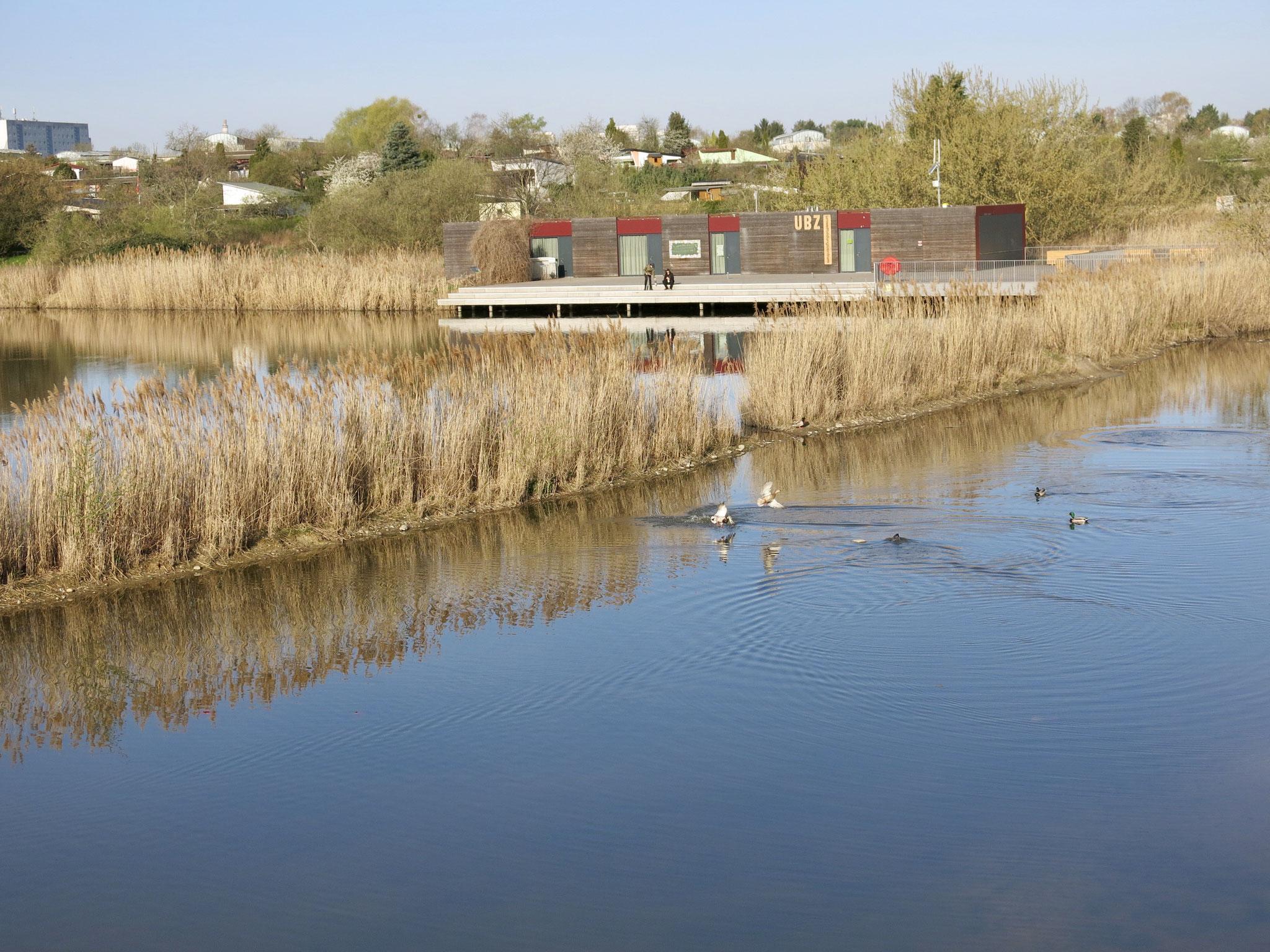 Tipp 9: Kienberg: Umweltbildungszentrum am Wuhleteich