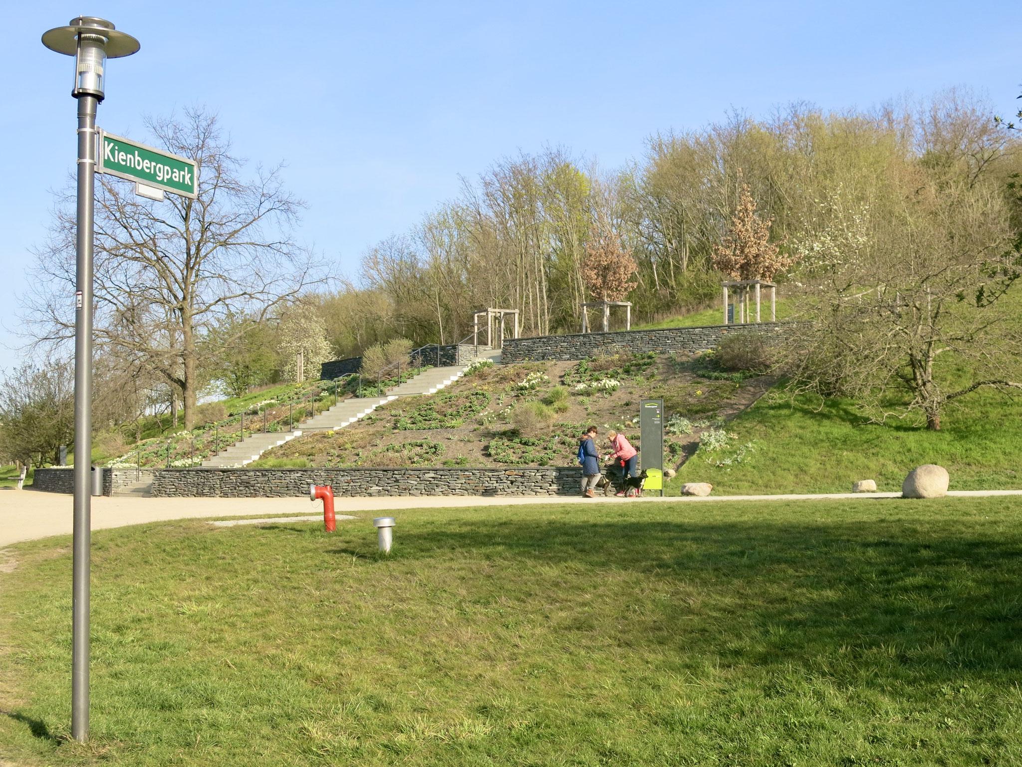 Tipp 9: Kienberg, Kienbergterrassen